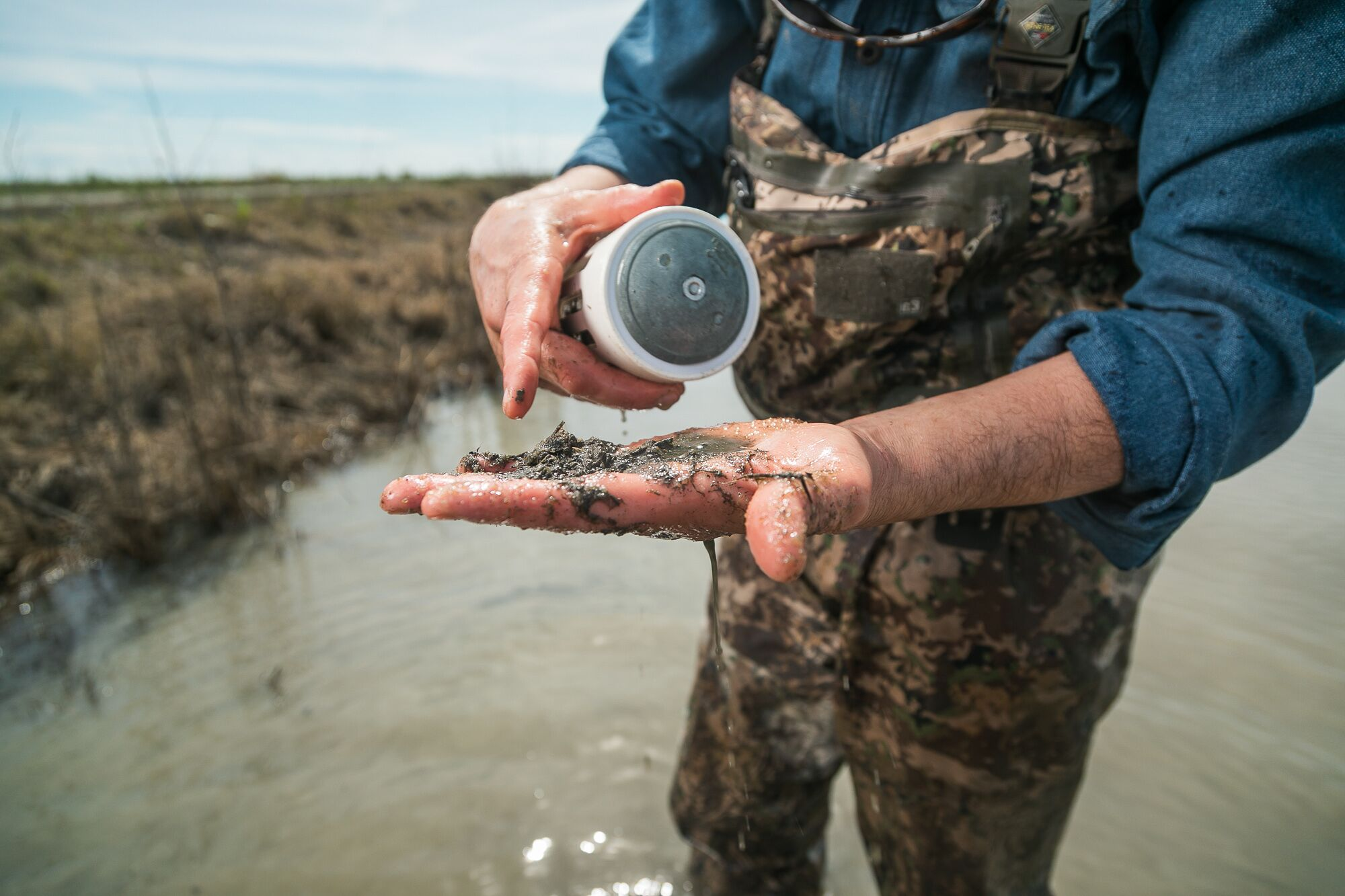 Jacob Katz examines the contents of a siphon after collecting a water sample in a flooded rice field near the Sacramento River.