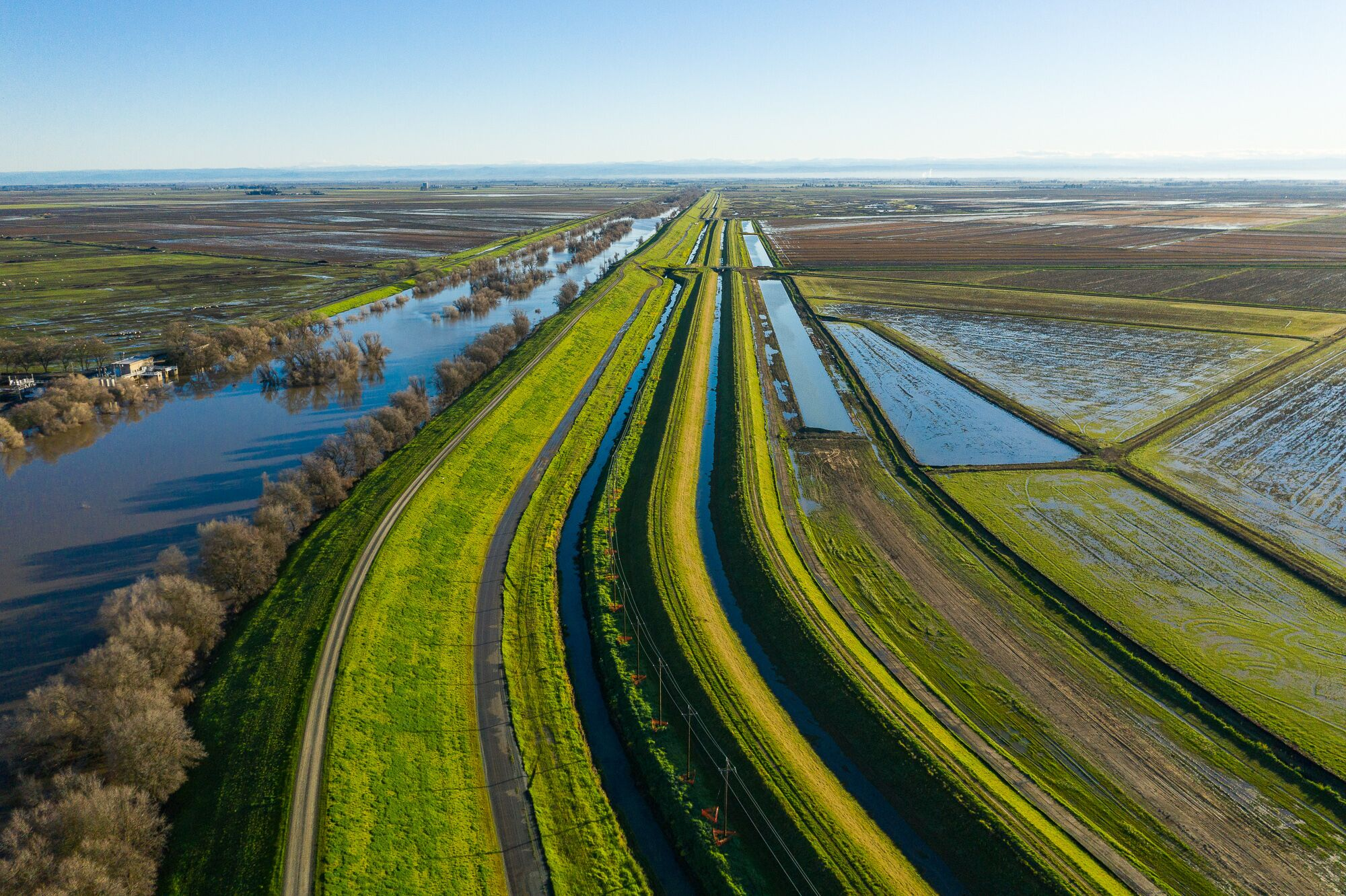 An aerial view of a canal and irrigation system near the Sacramento River illustrates how heavily engineered the landscape has become.