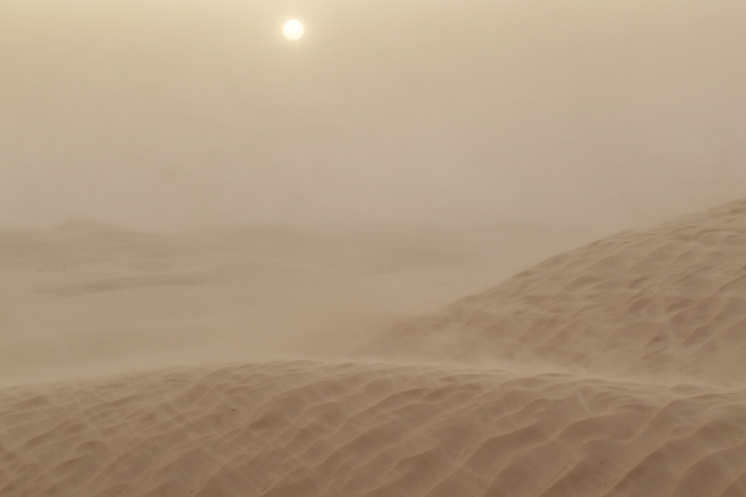 Sunlight filters dimly through clouds of sand during a severe sandstorm in the Tunisian Sahara.