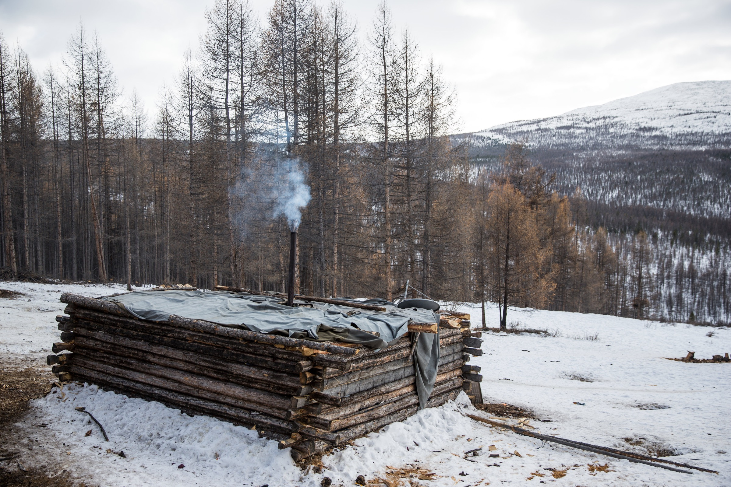 Smoke rises from the chimney of a log cabin home near Tsagaan Nuur, Mongolia. Such dwellings are becoming more common as teepees become less tenable in a changing landscape.