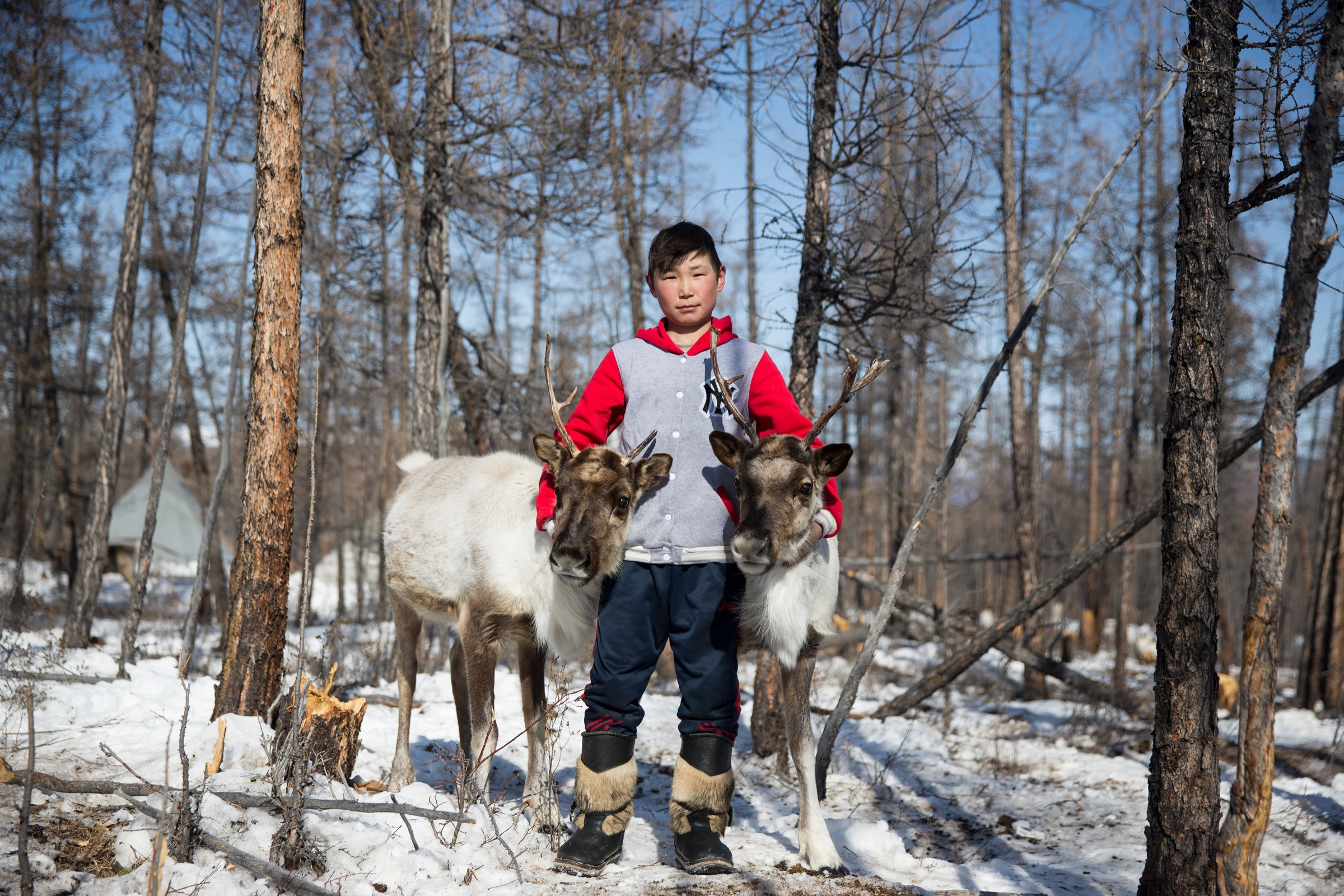 The Dukha are close to their animals from an early age. Here, a boy poses with two reindeer near Tsagaan Nuur, Mongolia.