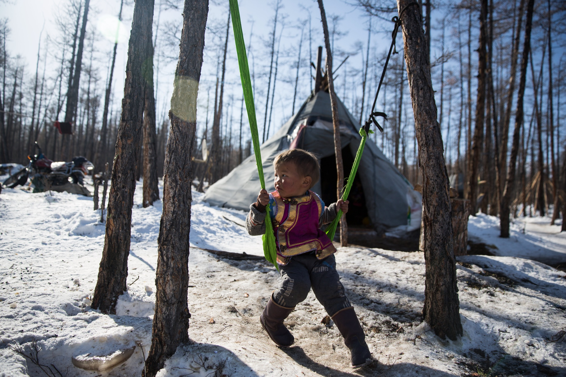 A young Dukha boy swings in front of his family's teepee at a seasonal camp. When summer arrives, they will relocate with their reindeer to another camp.