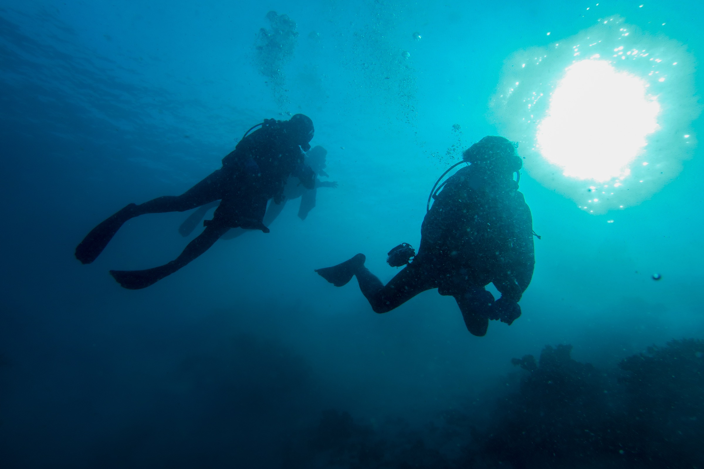 Divers descend to collect coral samples—Photograph by Vincent Hilaire / TARA Expeditions Foundation