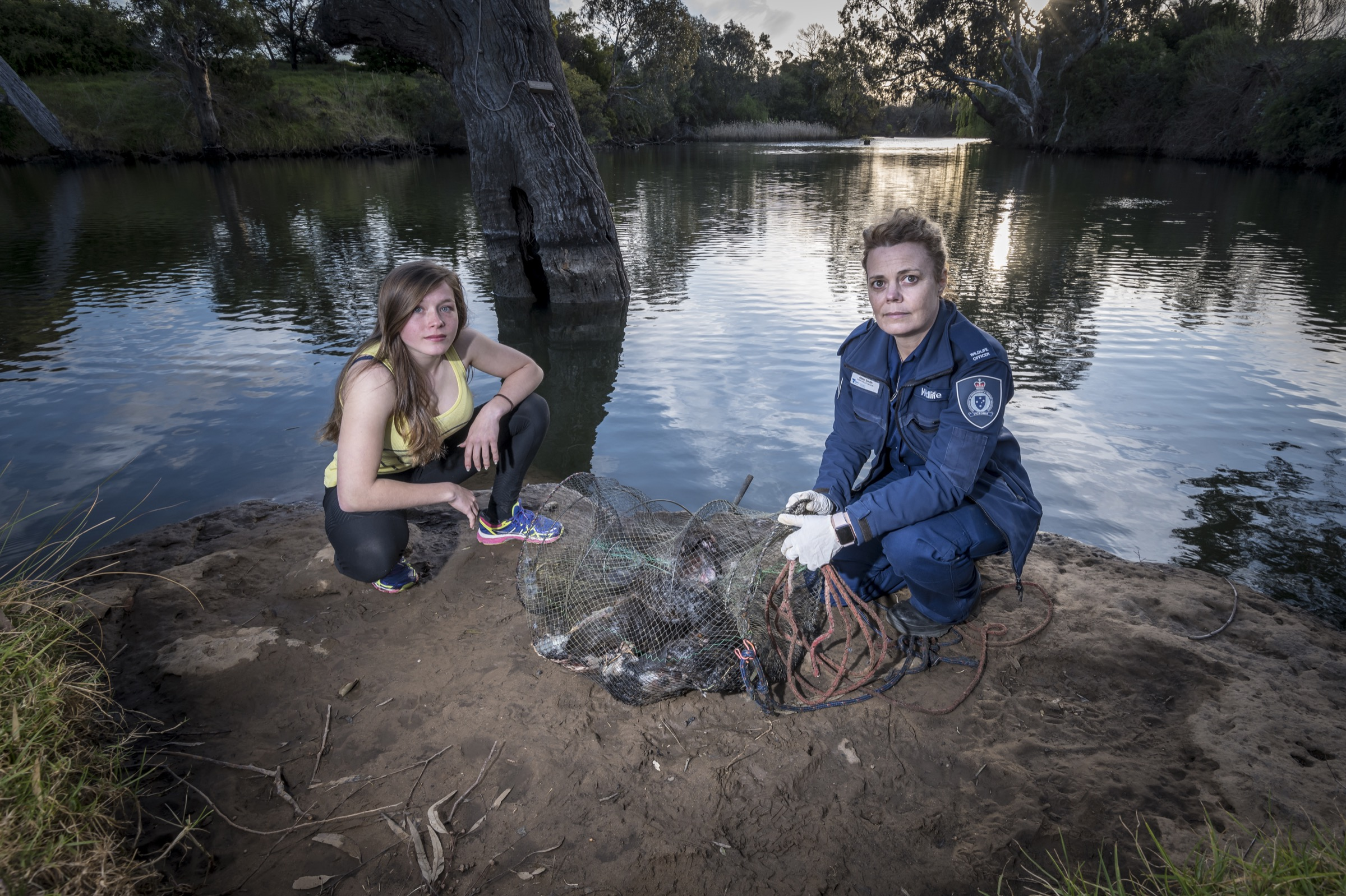 Crab traps called opera house traps pose a significant threat to foraging platypuses. A wildlife officer shows one such trap that contained the bodies of five drowned animals.