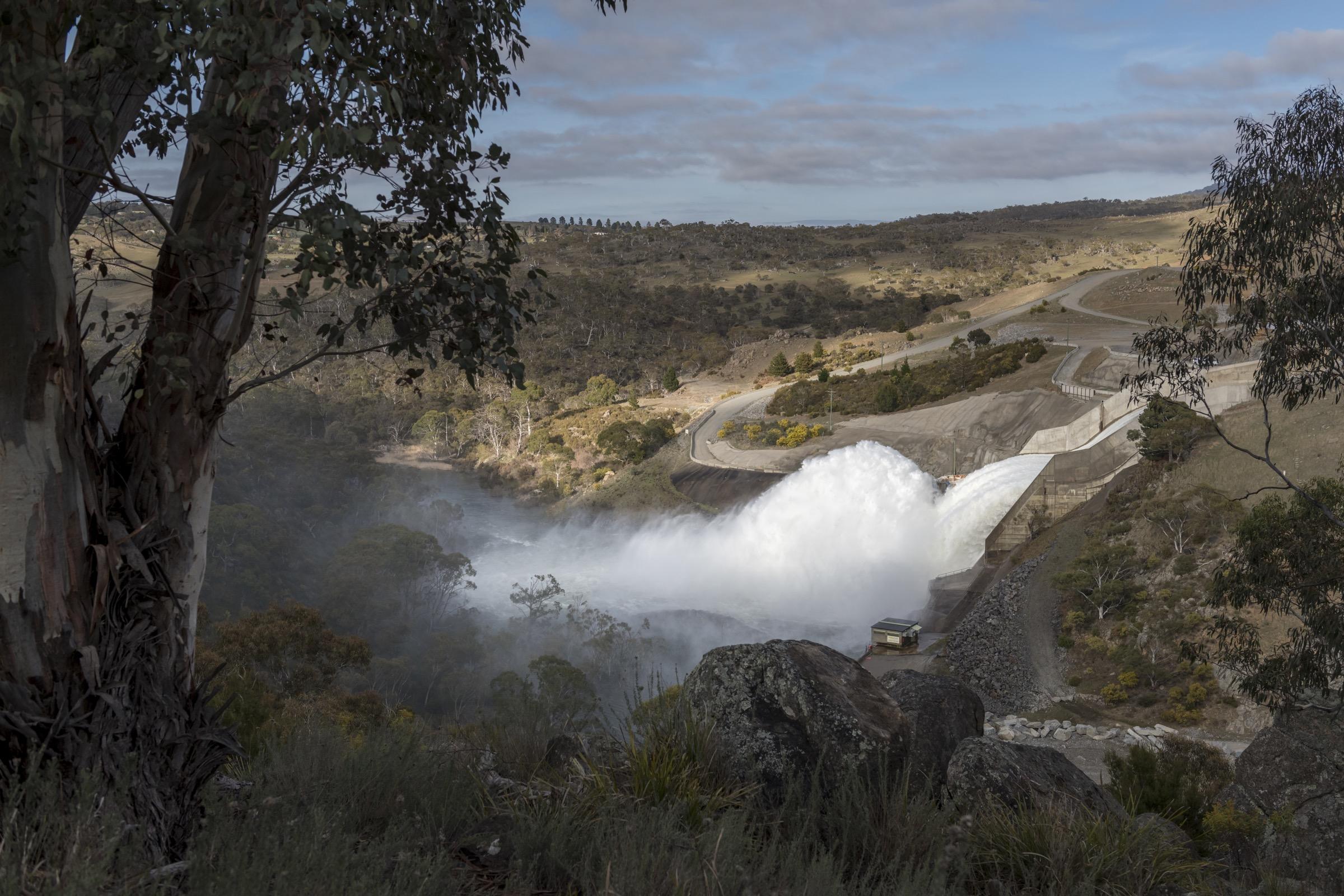 Se libera agua de la presa Jindabyne en Nueva Gales del Sur.  Las presas representan una de las amenazas más importantes para los ornitorrincos y su hábitat en el este de Australia.
