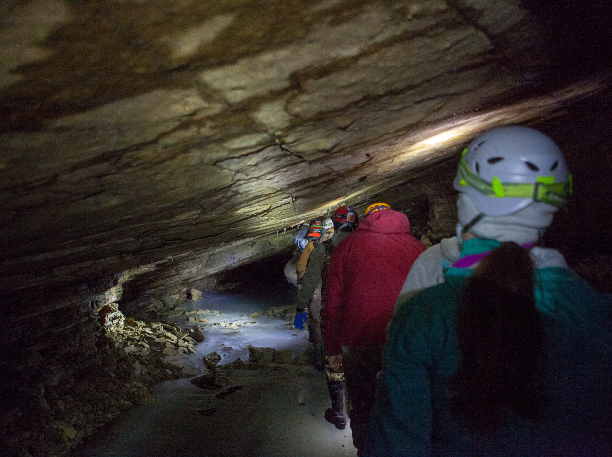 Led by Carl Herzog, a wildlife biologist for the New York State Department of Environmental Conservation, a team of mostly agency employees files into the cave, ducking to avoid the low ceiling. Photograph by Geoffrey Giller