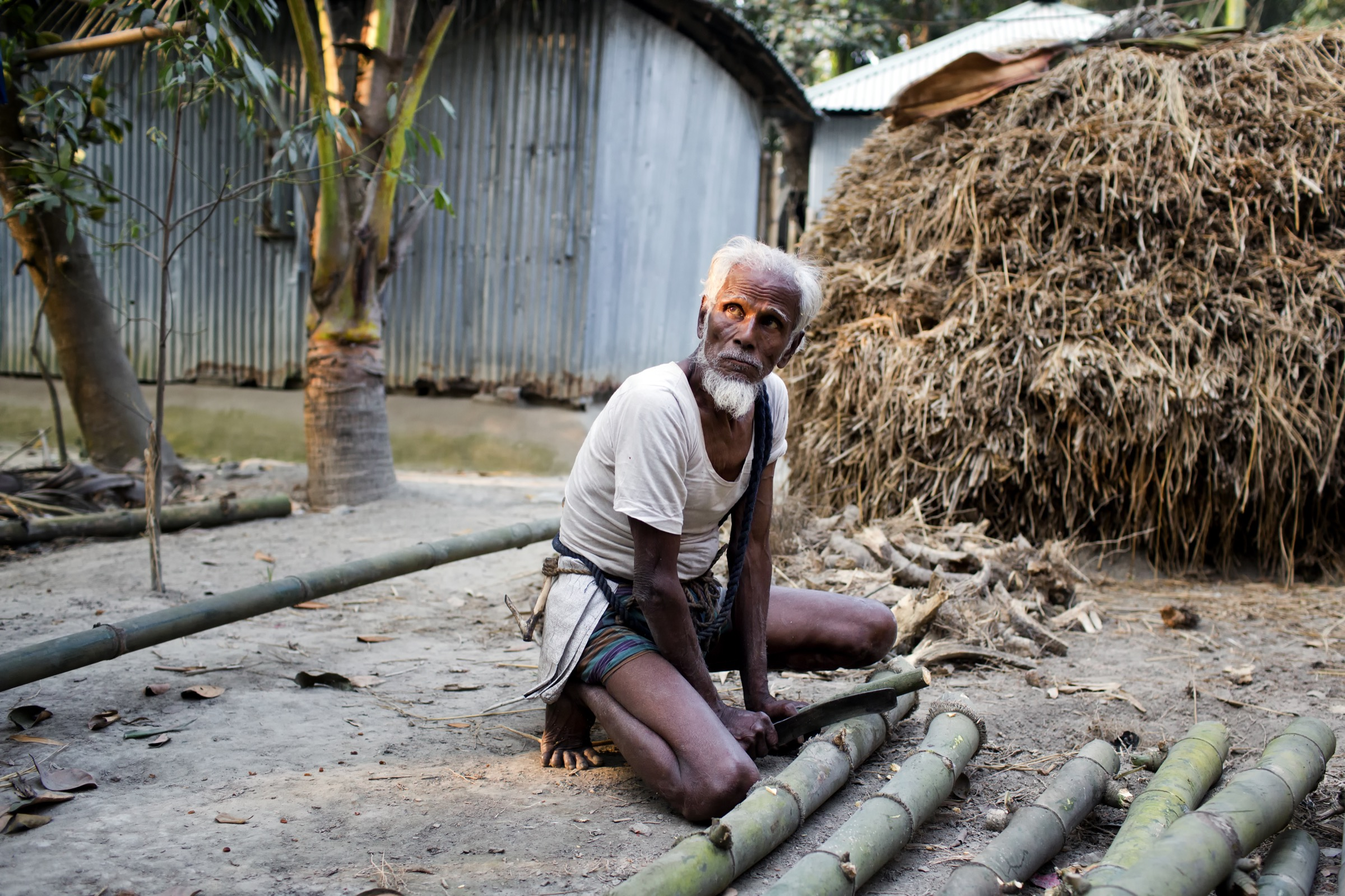 This 85-year-old resident of Mohonpur supplements his meager income as a wood collector by tapping the date palm trees near his home and selling the sap to others in the village. Photograph by A.M. Ahad