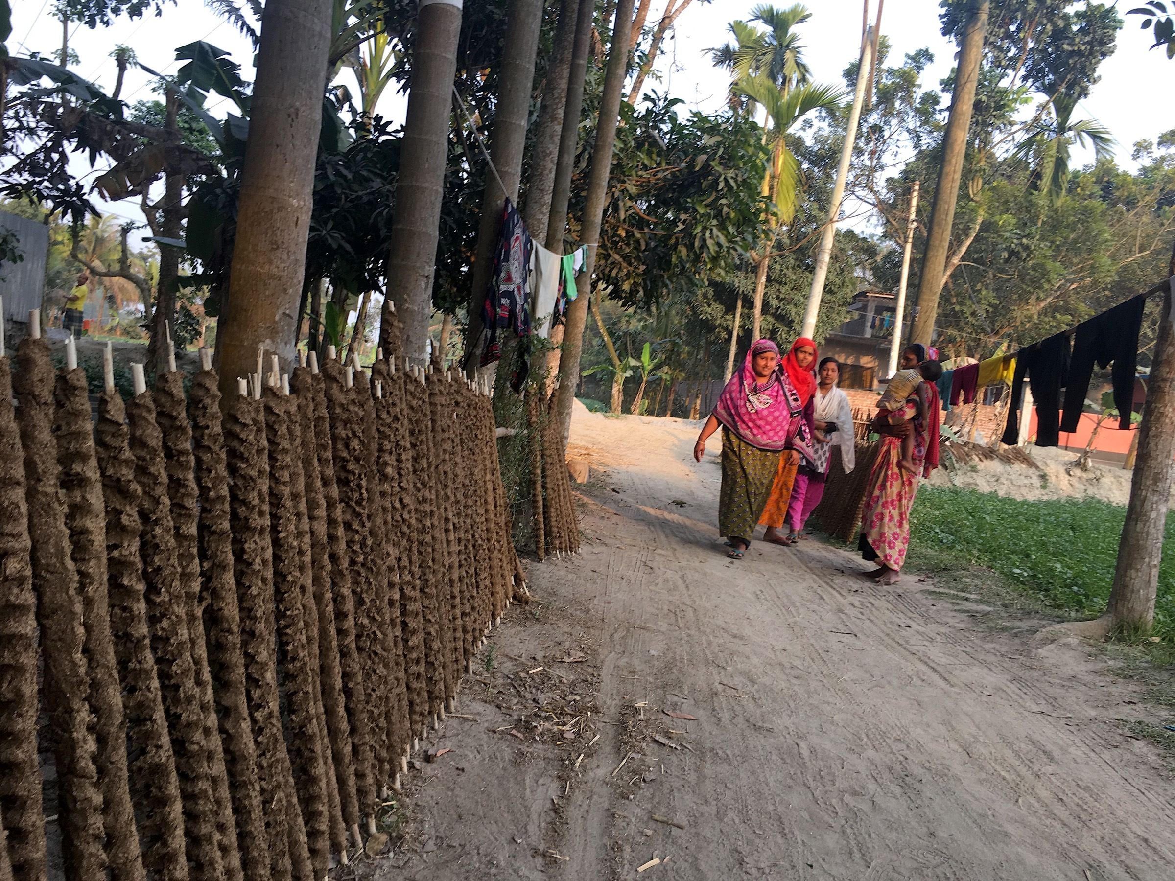 Investigating Nipah outbreaks and potential threats of infection frequently takes the team to remote regions of Bangladesh, where one town or village blends into another and homes have no address. Photograph by Steven Bedard