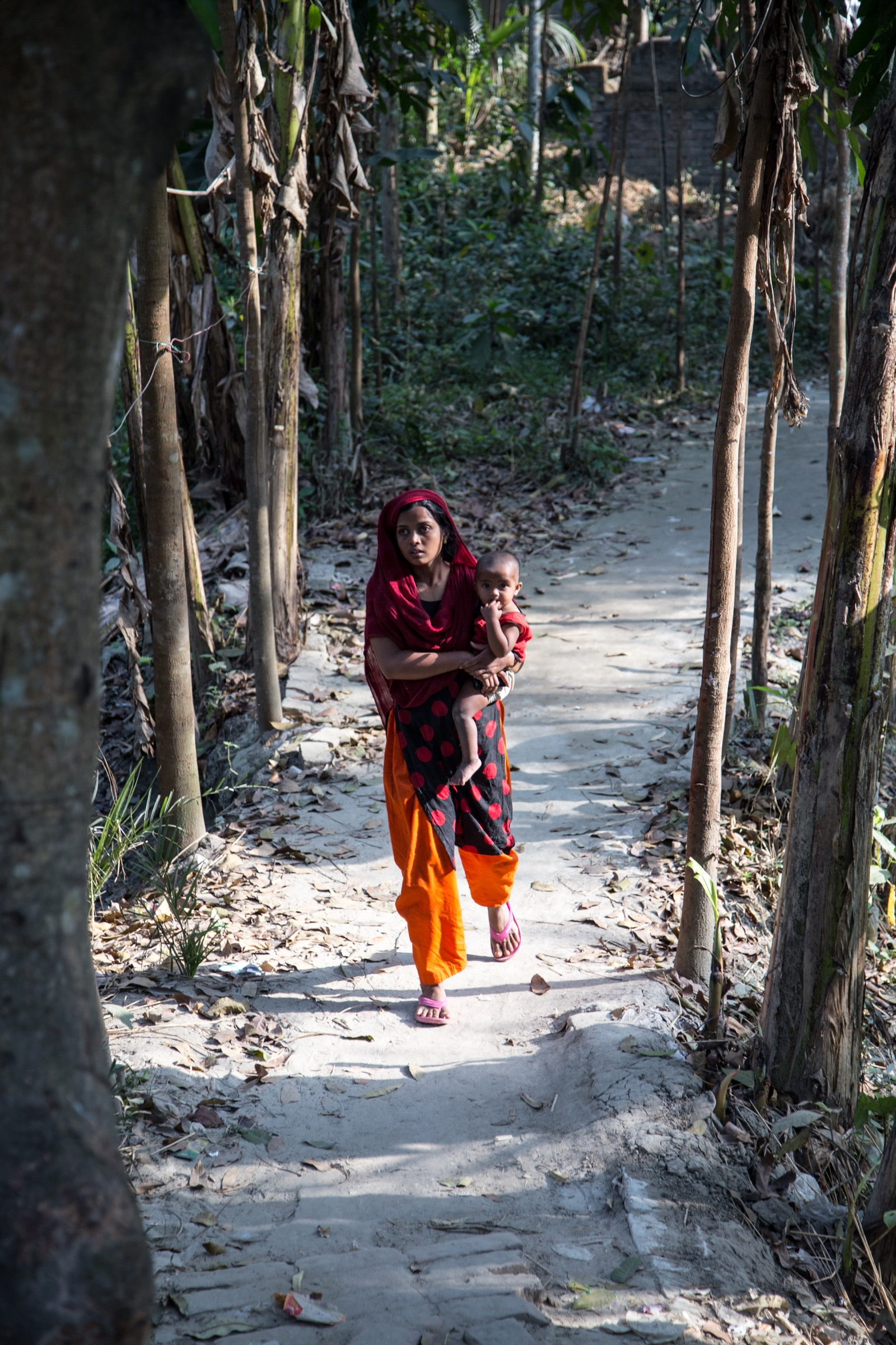 Hossain M. S. Sazzad and his team at ICDDR,B have learned the value of slow and steady trust-building in their efforts to prevent future Nipah outbreaks. Frequently, the only way to access remote villages is on foot, along narrow paths like this one. Photograph by Steven Bedard