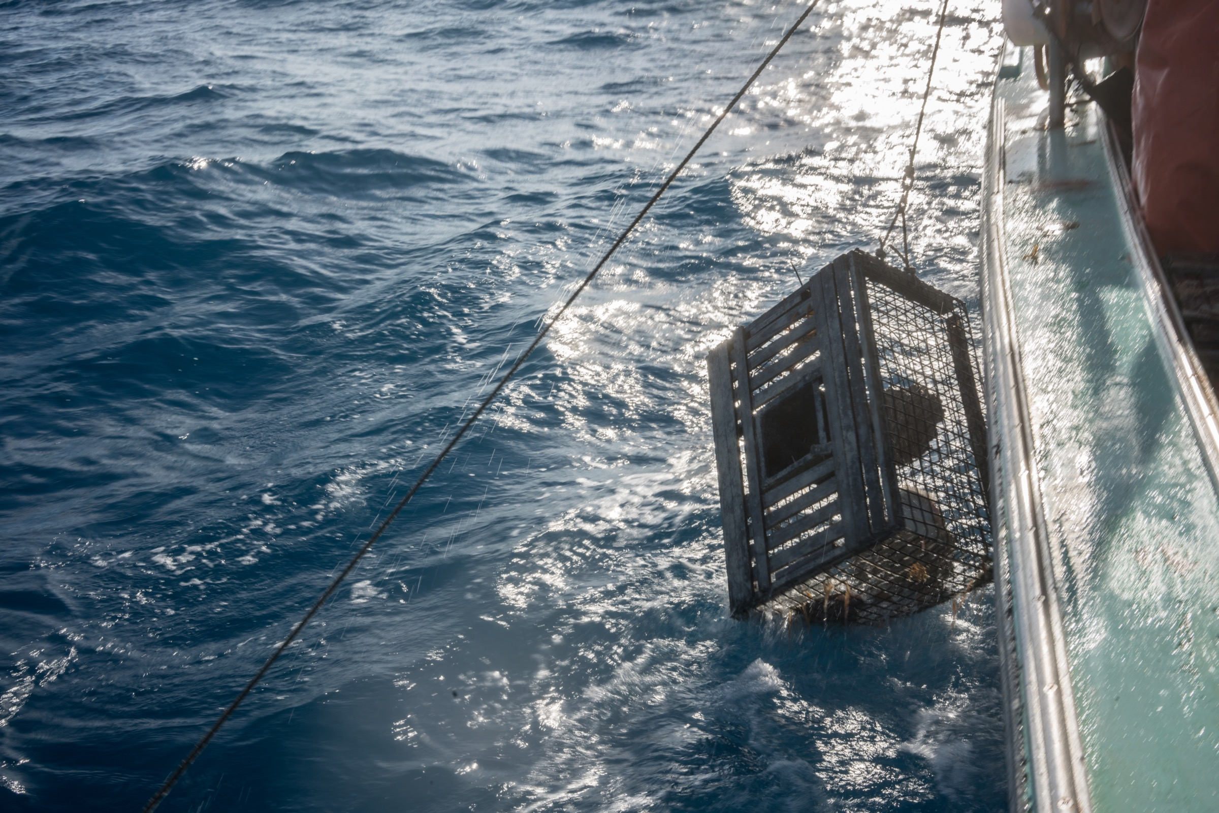 A lobster trap is lowered over the side of a lobster fishing vessel off Marathon, Florida. Photograph by Dominic Bracco II