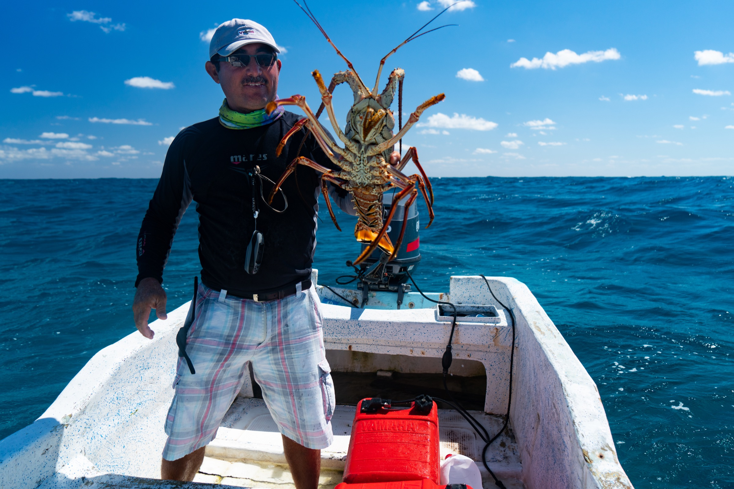 Emilio Pérez Mendoza shows off one of the Caribbean spiny lobsters his crew caught under a casita. Photograph by Steve De Neef