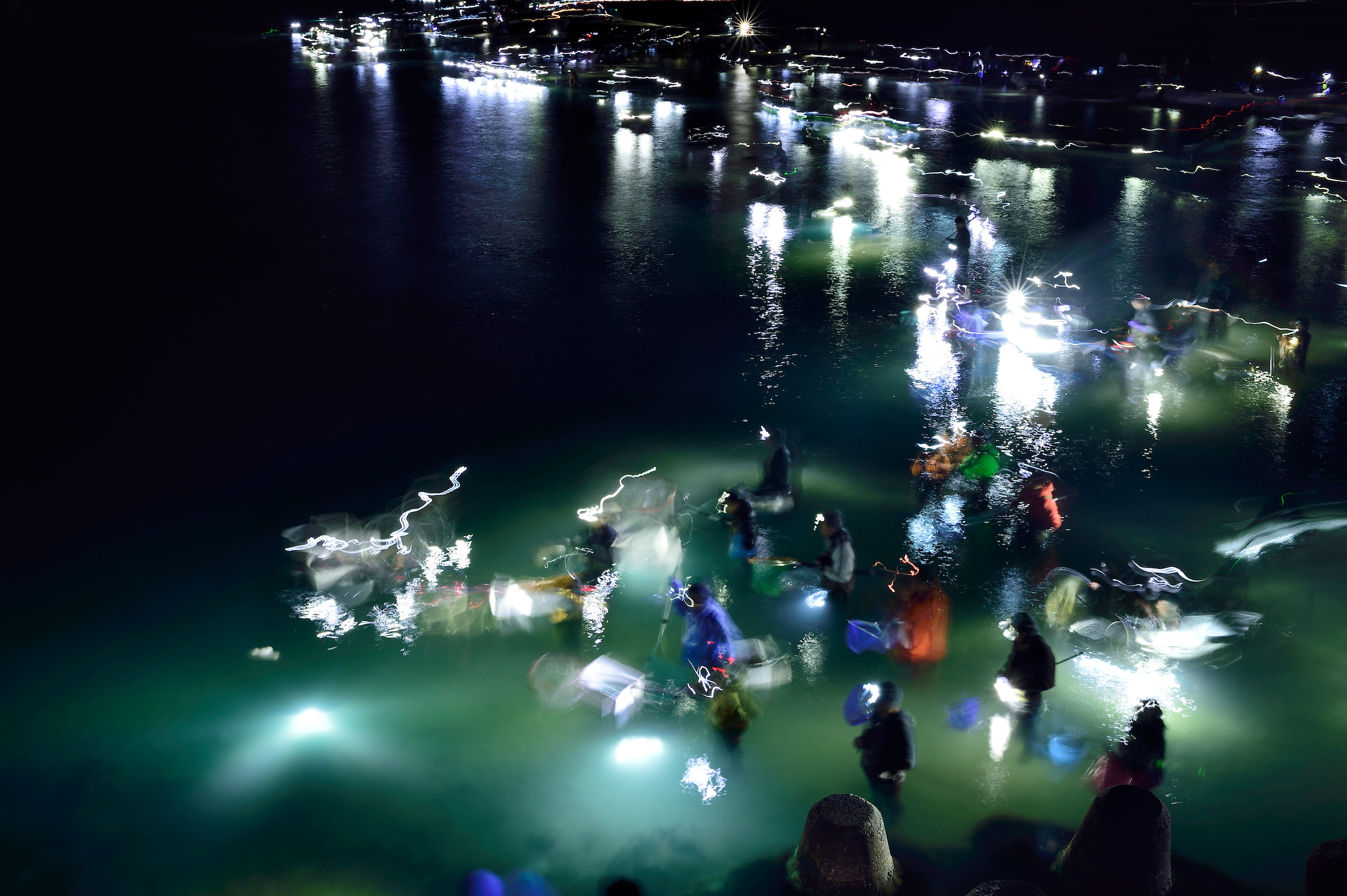 With their flashlight beams mirroring the glow of their quarry, fishers make their way through Toyama Bay in search of spawning firefly squid.