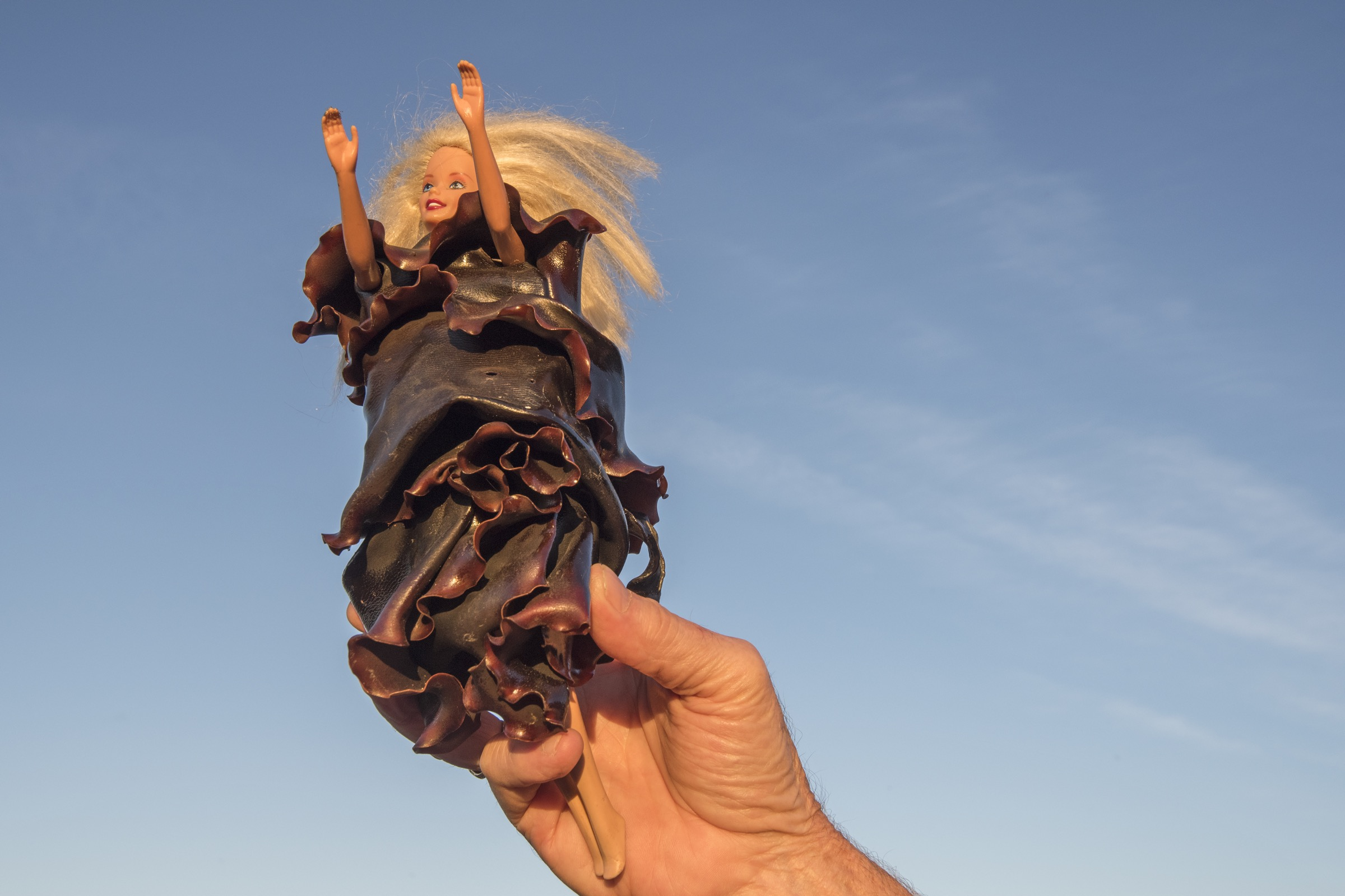 King Island resident artist Caroline Kininmonth creates art made from bull kelp, including designer dresses for Barbie dolls.