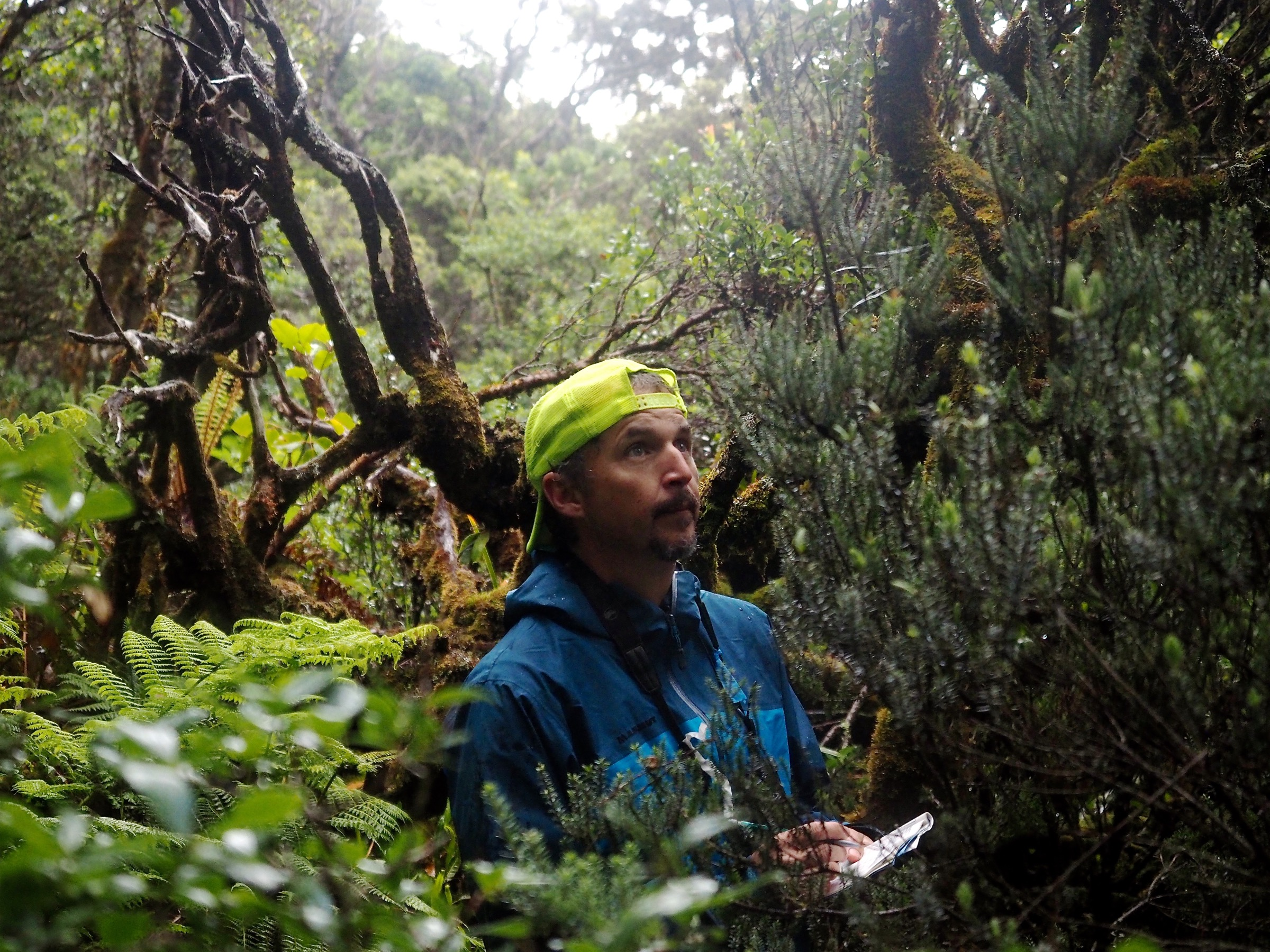 Seth Judge listens intently for bird calls during an 8-minute survey count. Photograph by Jeremy Miller