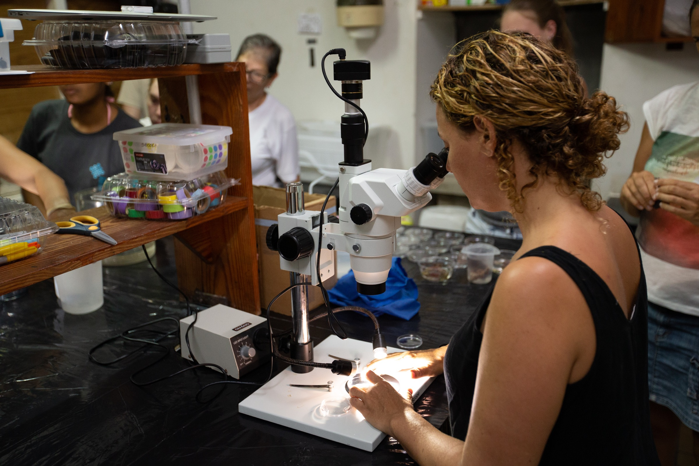 Rita Sellares, executive director of FUNDEMAR in the Dominican Republic, observes embryos through a microscope at the CARMABI Marine Research Station laboratory.