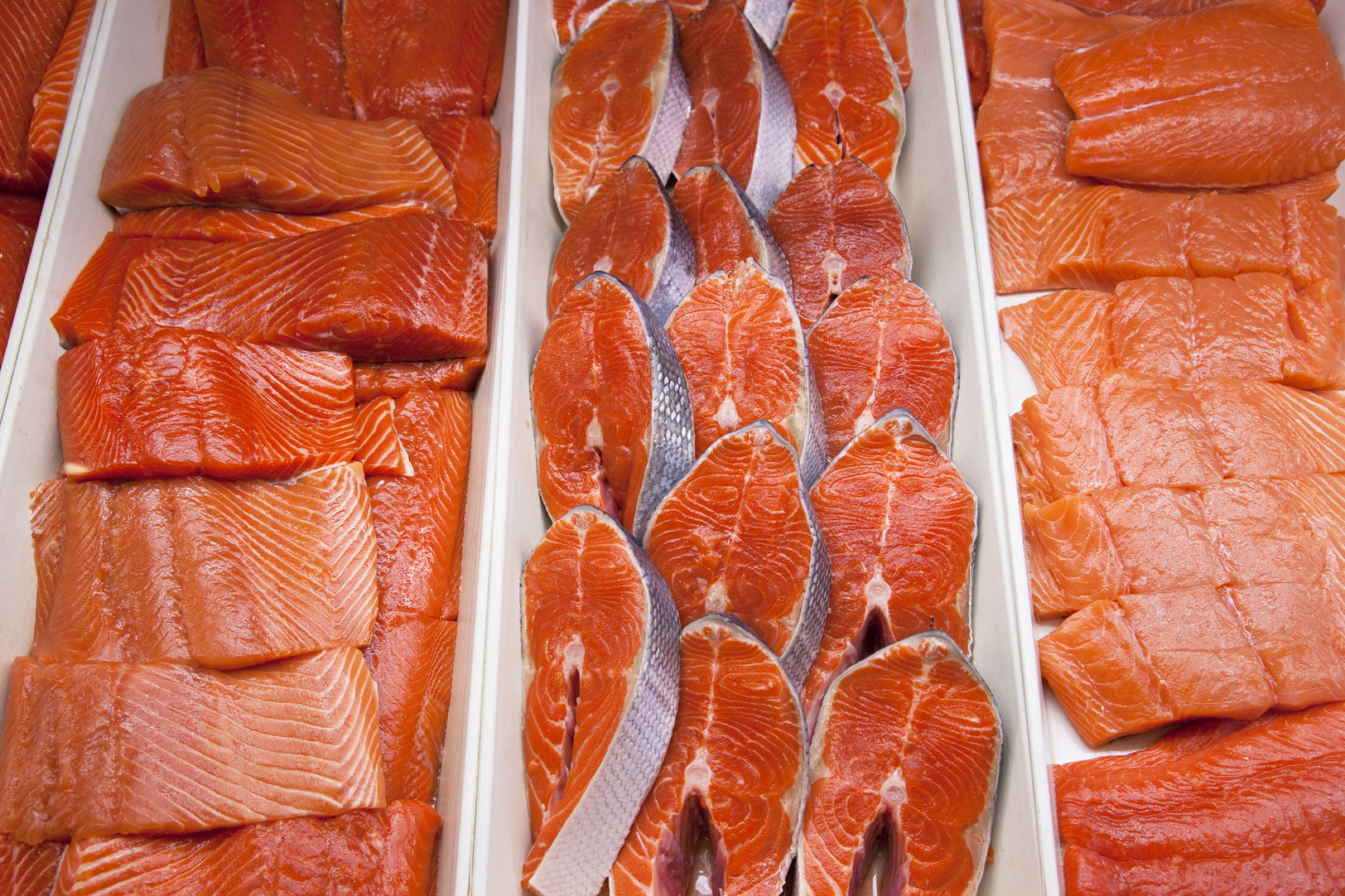 Wild salmon for sale in a grocery store—Photograph by Lucidio Studio Inc./Getty