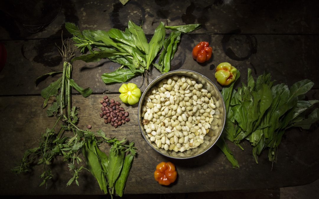 Can Wild Foods Save the Amazon?