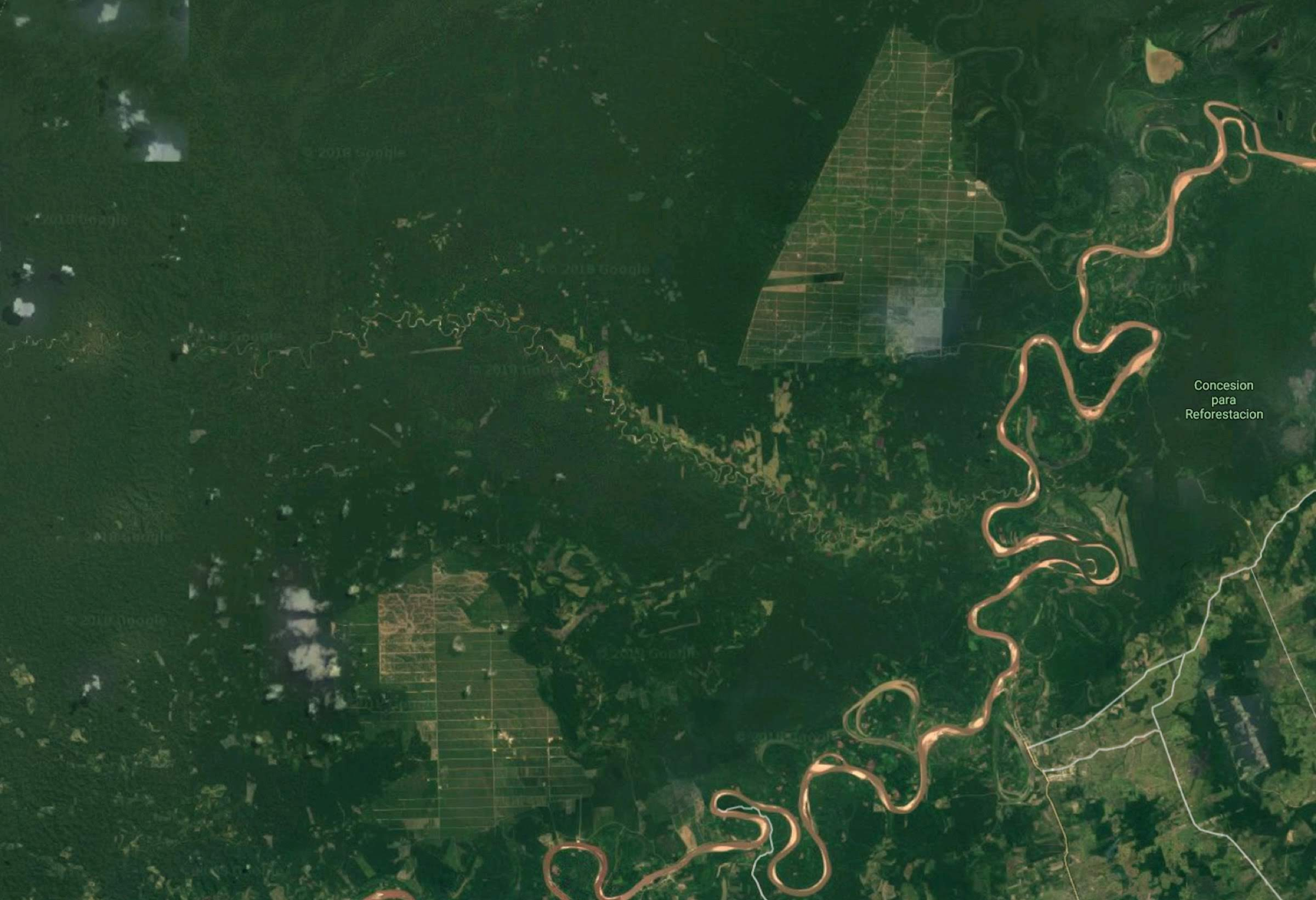 Deforestation is happening quickly in the Peruvian Amazon, particularly in the Ucayali region. This Landsat image from Google shows two massive swaths of clearcut forest north of Pueblo Libre—13,000 hectares (32,000 acres) in total.
