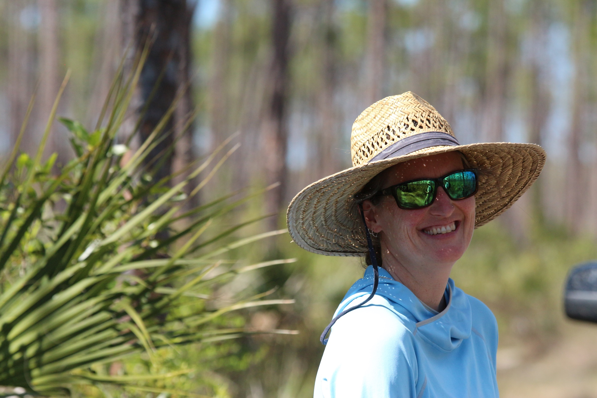 Erica Henry traded in her skis to study Florida's rare butterflies, including the Bartram's scrub hairstreak that lives here in the Everglades National Park. Photograph by Hannah Hoag