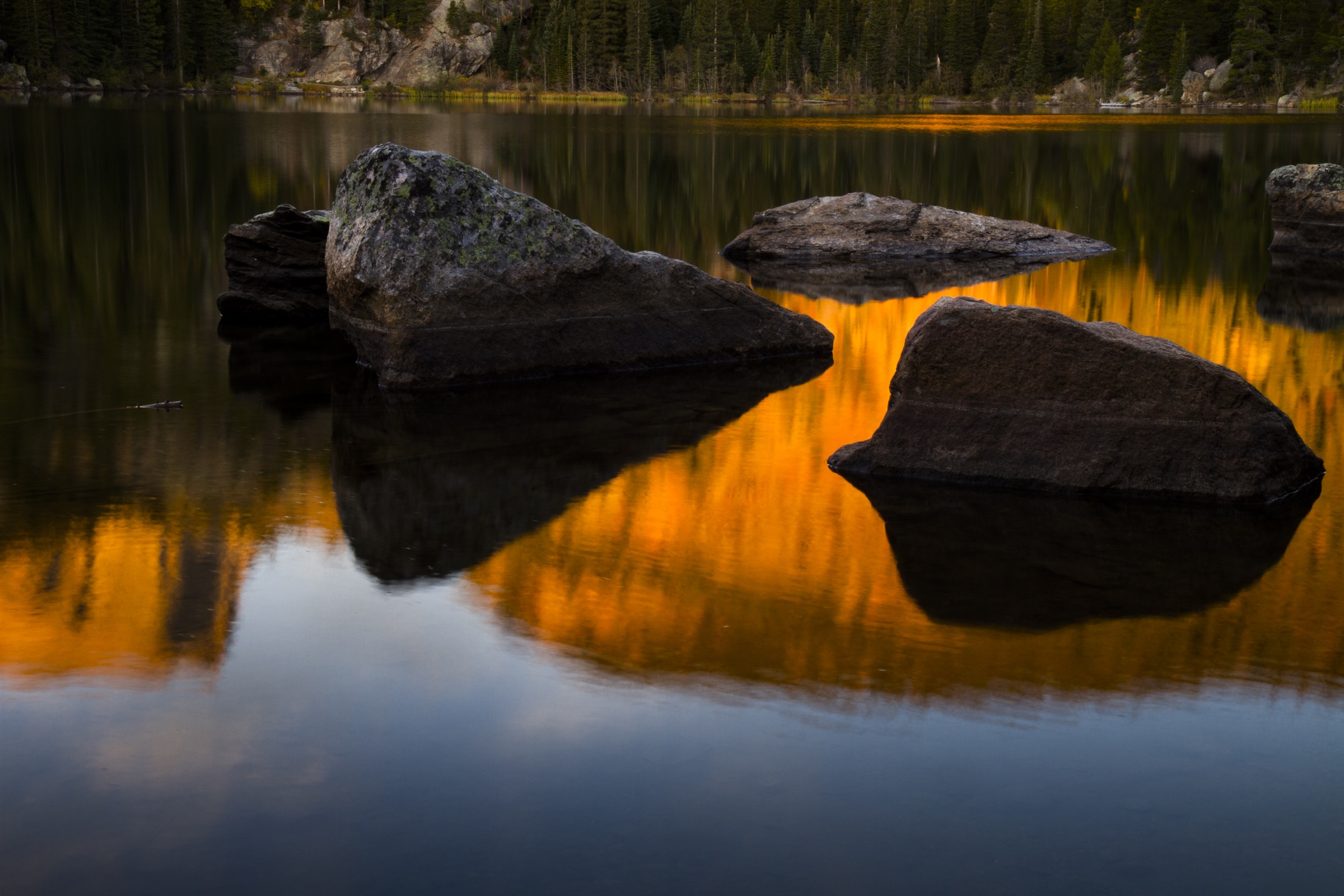 Streams and lakes across much of the greenback'srange have been hit hard by pollution, dams, sedimentation, and the introduction of non-native species. In contrast, Rocky Mountain National Park has provided a nearly pristine setting for restoration efforts. Photograph by William Hughes