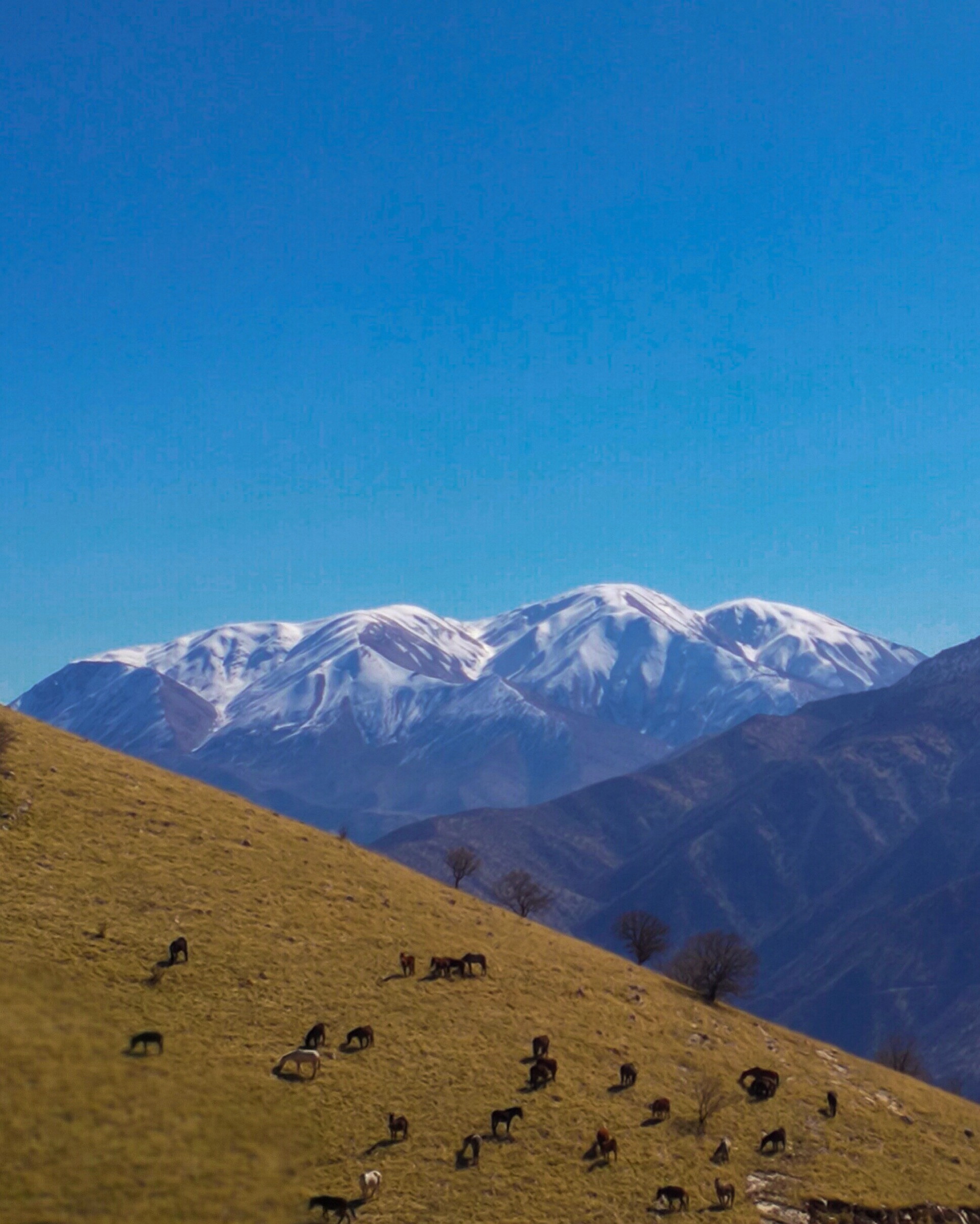 For Hana Raza, Korsh Ararat, and many other Kurds, the mountains have long been a safe haven. Photograph by Korsh Ararat