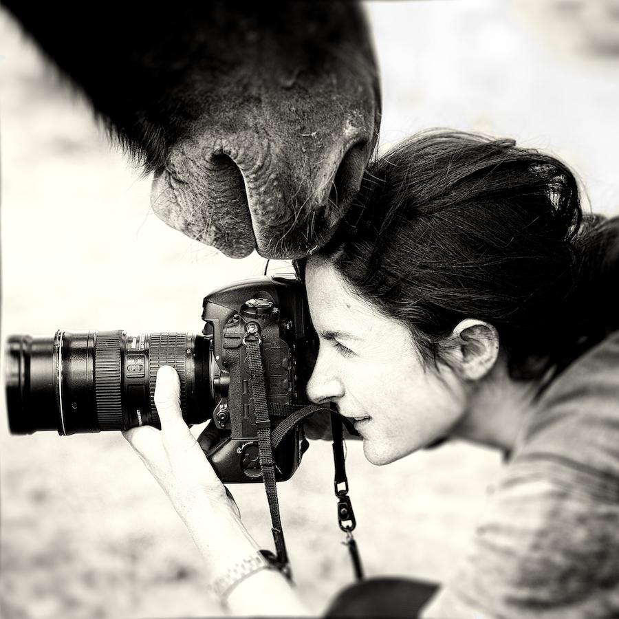 эти есть самые именитые фотографы днем
