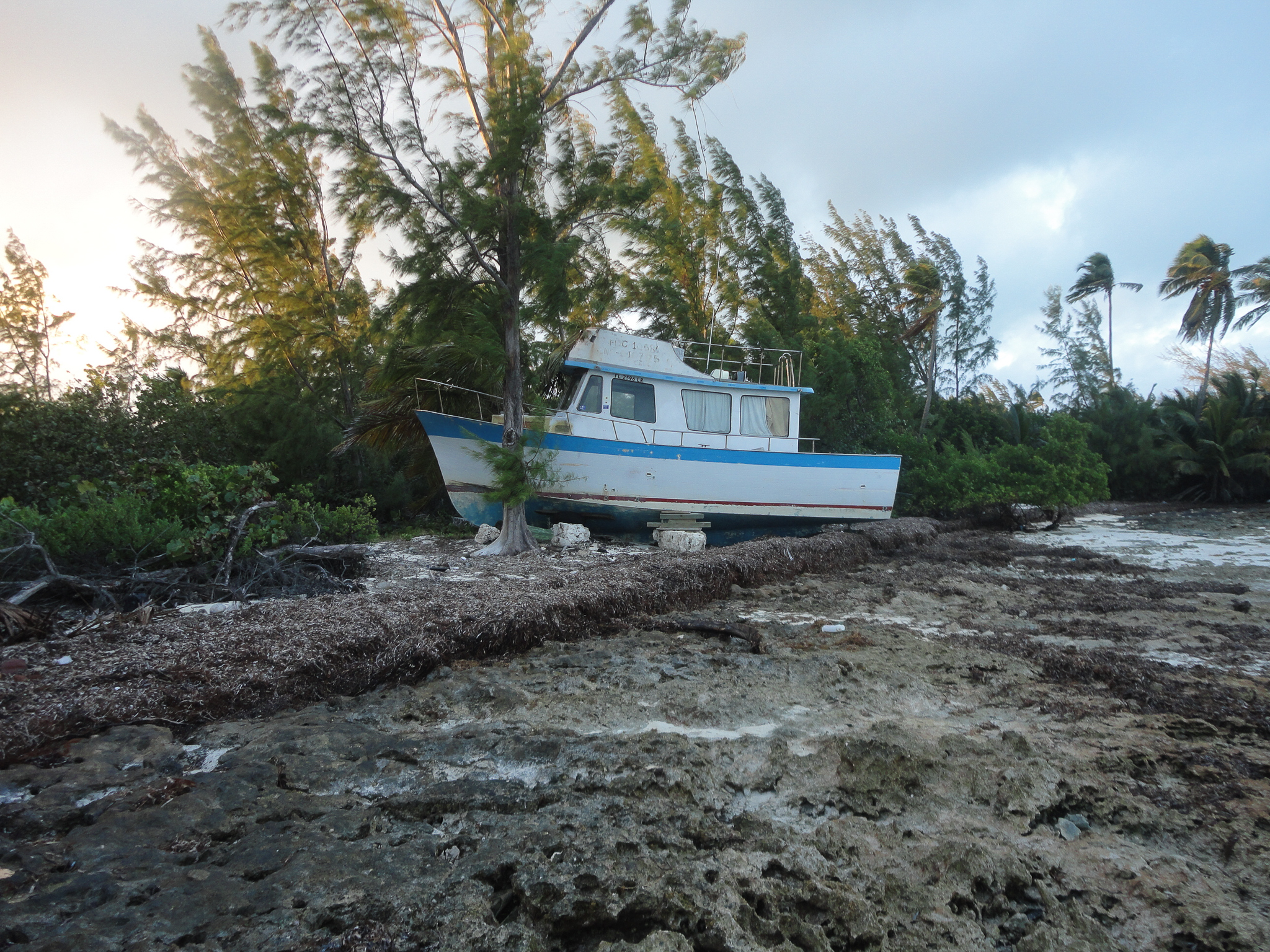 Signs of Hurricane Matthew aren't hard to find even months later. The storm snapped trees, toppled cars, leveled homes, and pushed boats far onto shore. Photograph by David Brian Butvill
