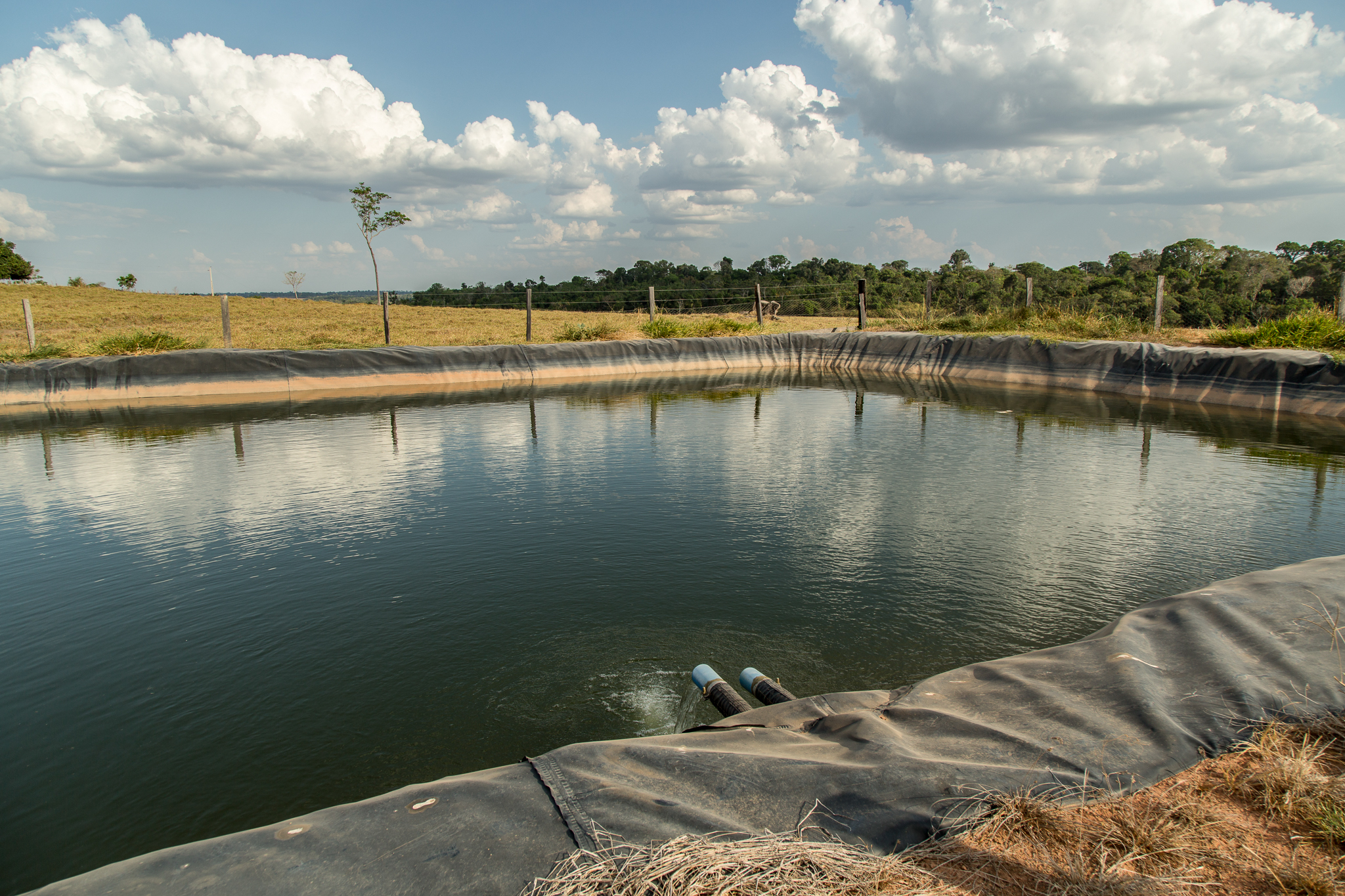 River water is piped into this holding pond and then distributed via gravity to watering troughs below. The irrigation system keeps the cattle away from rivers, streams, and springs, where their hoofs stomp out tree seedlings and cause erosion. Photograph by Christina Selby