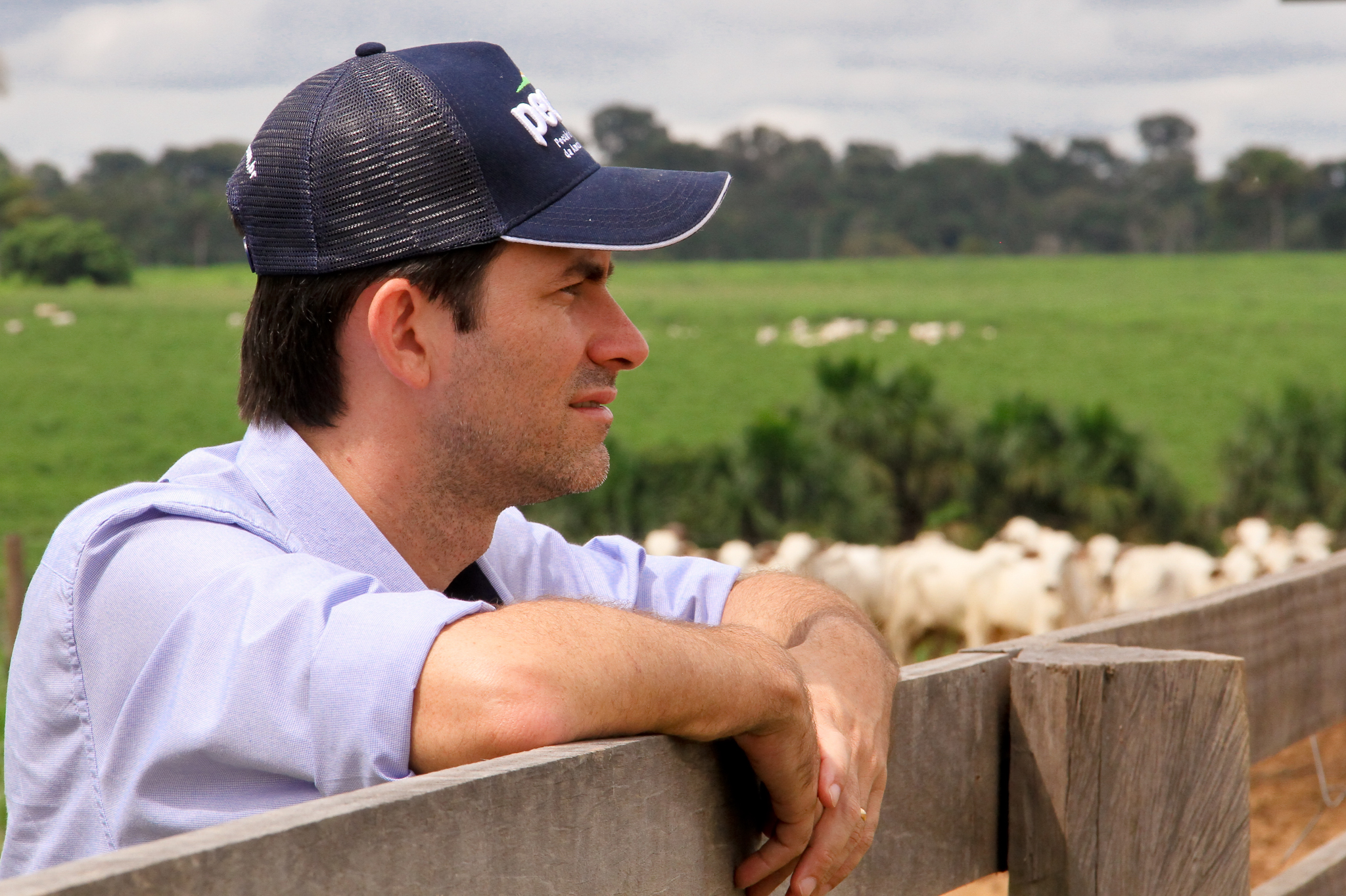 Vando Telles, the CEO and co-founder of Pecsa, visits a ranch in the wet season when pasture grasses are thriving and green. During the wet season, cattle are mostly pasture-fed but still receive supplemental feed to balance their nutrition and reduce methane emissions. Photo courtesy of Pecsa