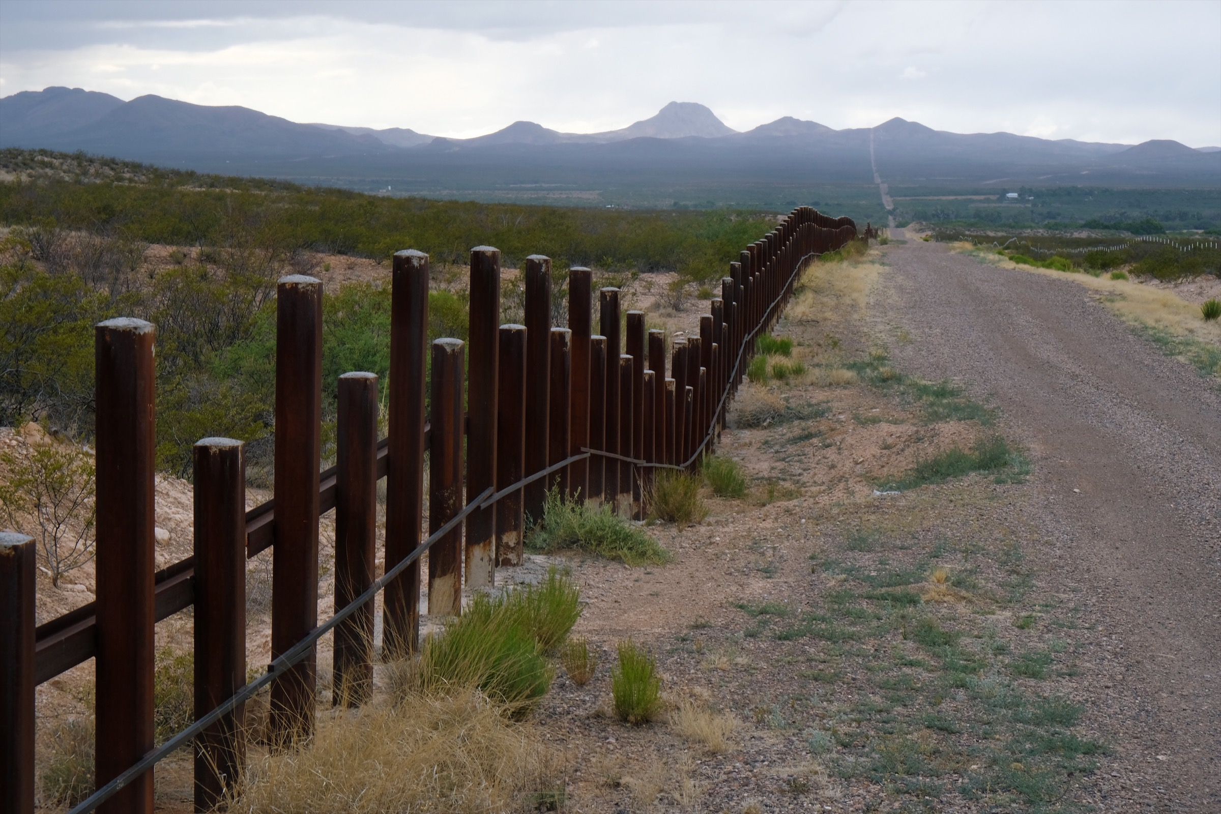 Both border fences and access roads, like these at the southern boundary of the San Bernardino Wildlife Refuge, keep wildlife from moving as freely as they once did. Photograph by Julian Smith