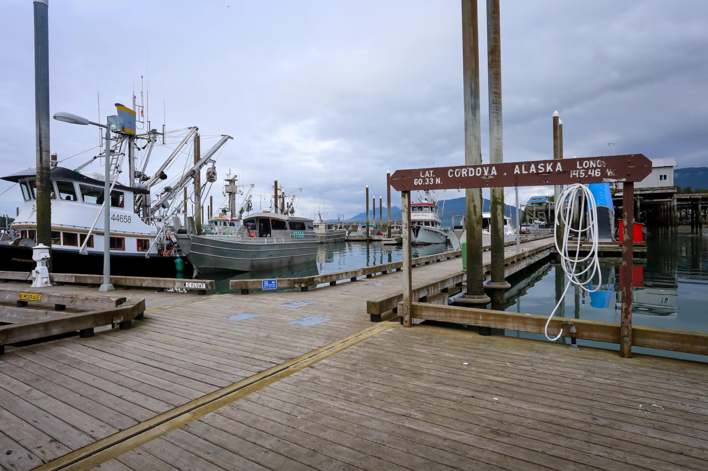 On the docks in the old harbor. Photograph by Julia Rosen