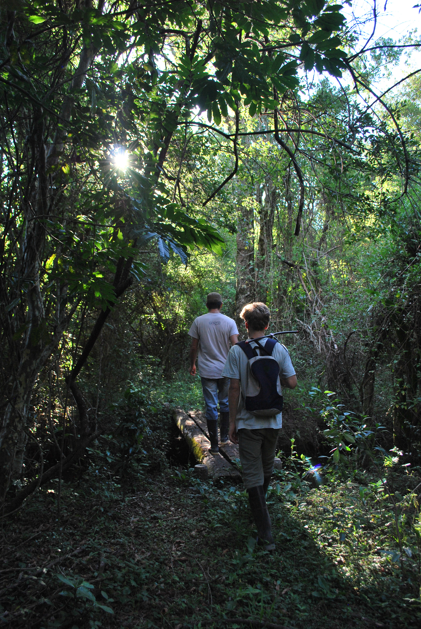 Ranger Emanuel Galetto and Lautaro Barbarik, a volunteer, search for giant anteaters.—Photo by Brooke Jarvis