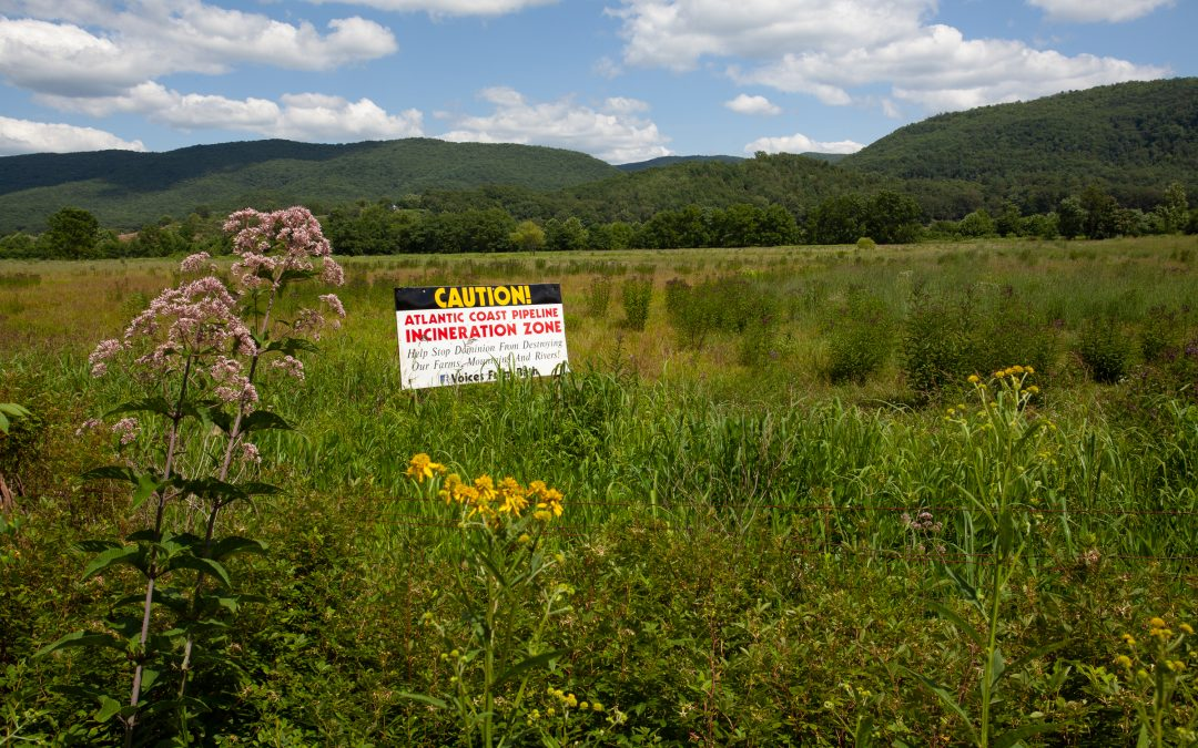 Protest signs like this one in a field in Little Valley, Virginia line the proposed route of the Atlantic Coast Pipeline. Photograph by Steven David Johnson