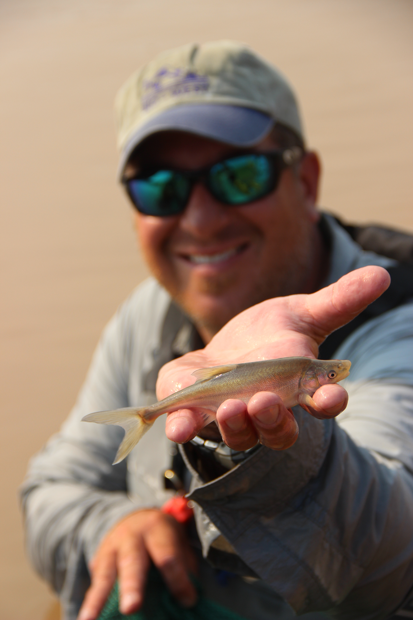 """Biologist Brandon Albrecht displays a juvenile humpback chub caught in the upper reaches of Lake Mead. """"The chub is the queen of the canyon—it drives management, and it's one of the most studied fish in the world,"""" says Mark McKinstry, a Bureau of Reclamation biologist."""