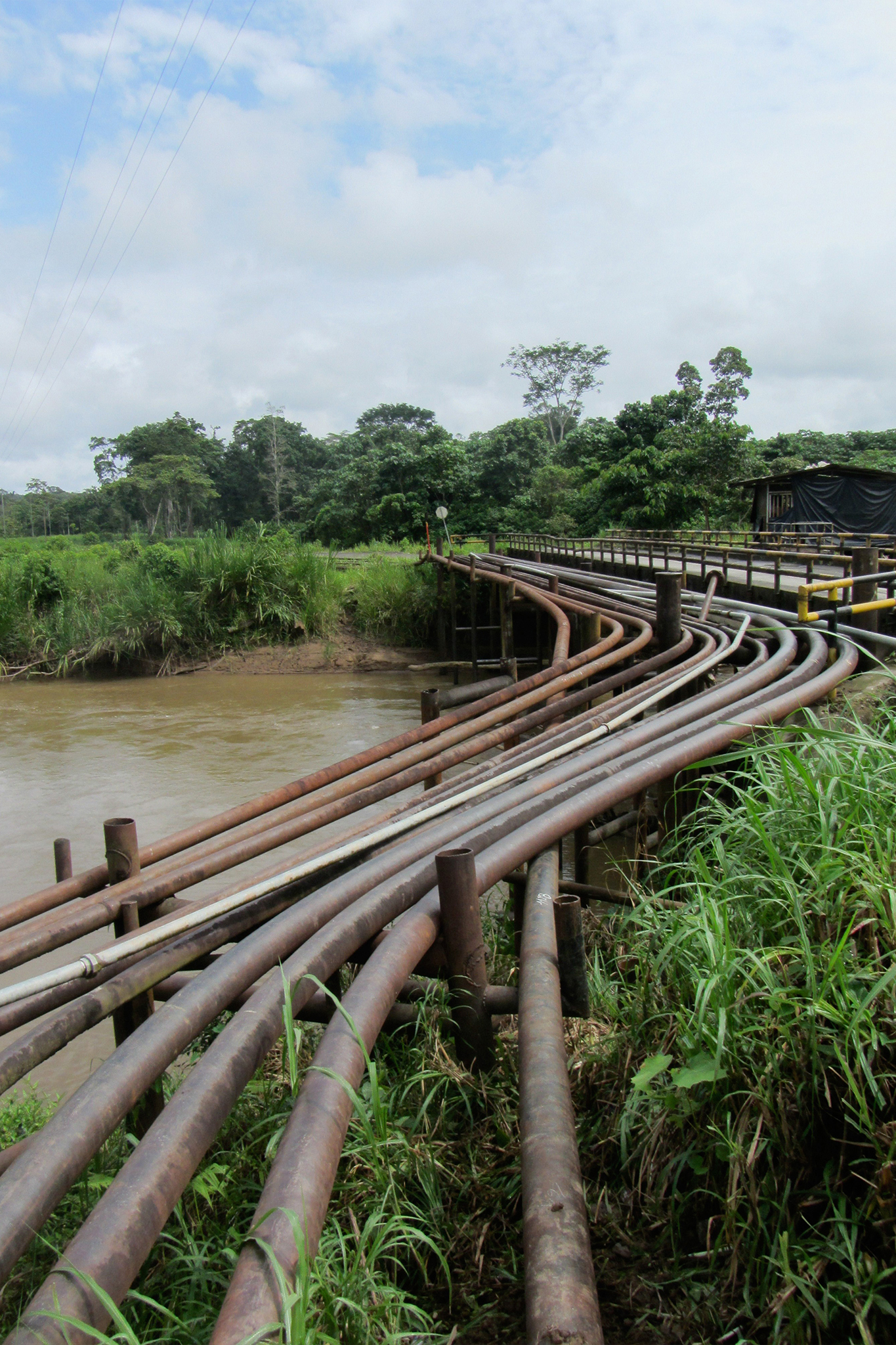 Oil pipelines carry oil from nearby wells across the Shiripuno River, which flows directly through Yasuní National Park.
