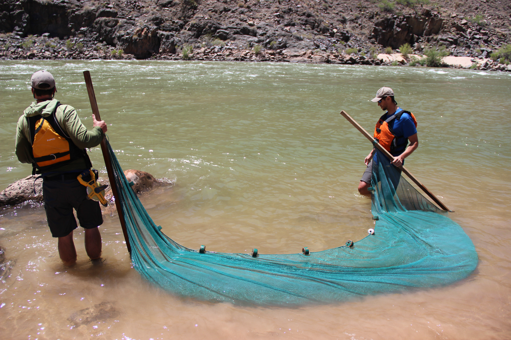 Adam Barkalow (left) and the author pull a seine along a sandy stretch of Colorado River bottom.