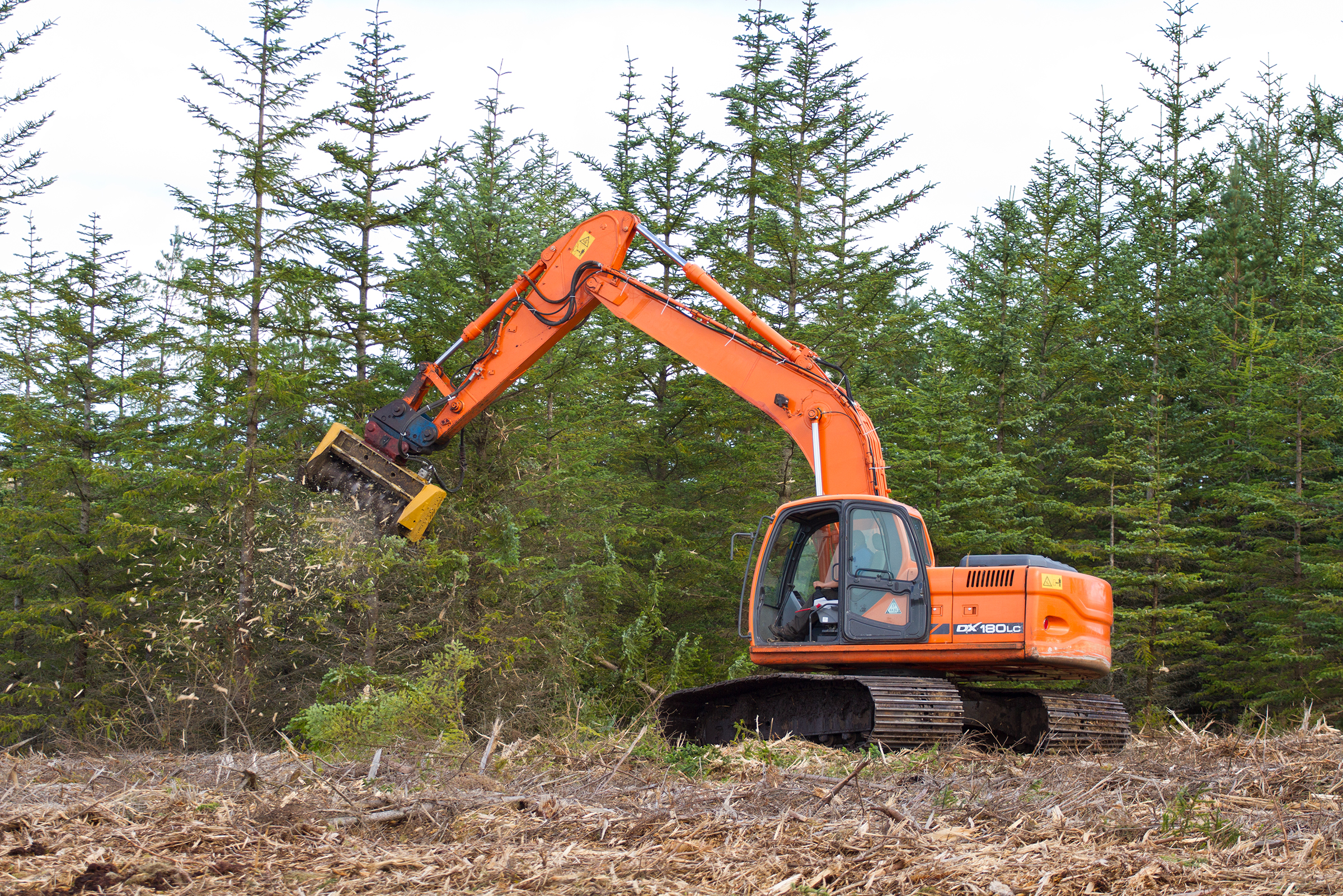 Land managers use heavy equipment to remove spruce and pine trees from the Forsinard Flows Reserve in an effort to restore the bog ecosystem that once thrived here.