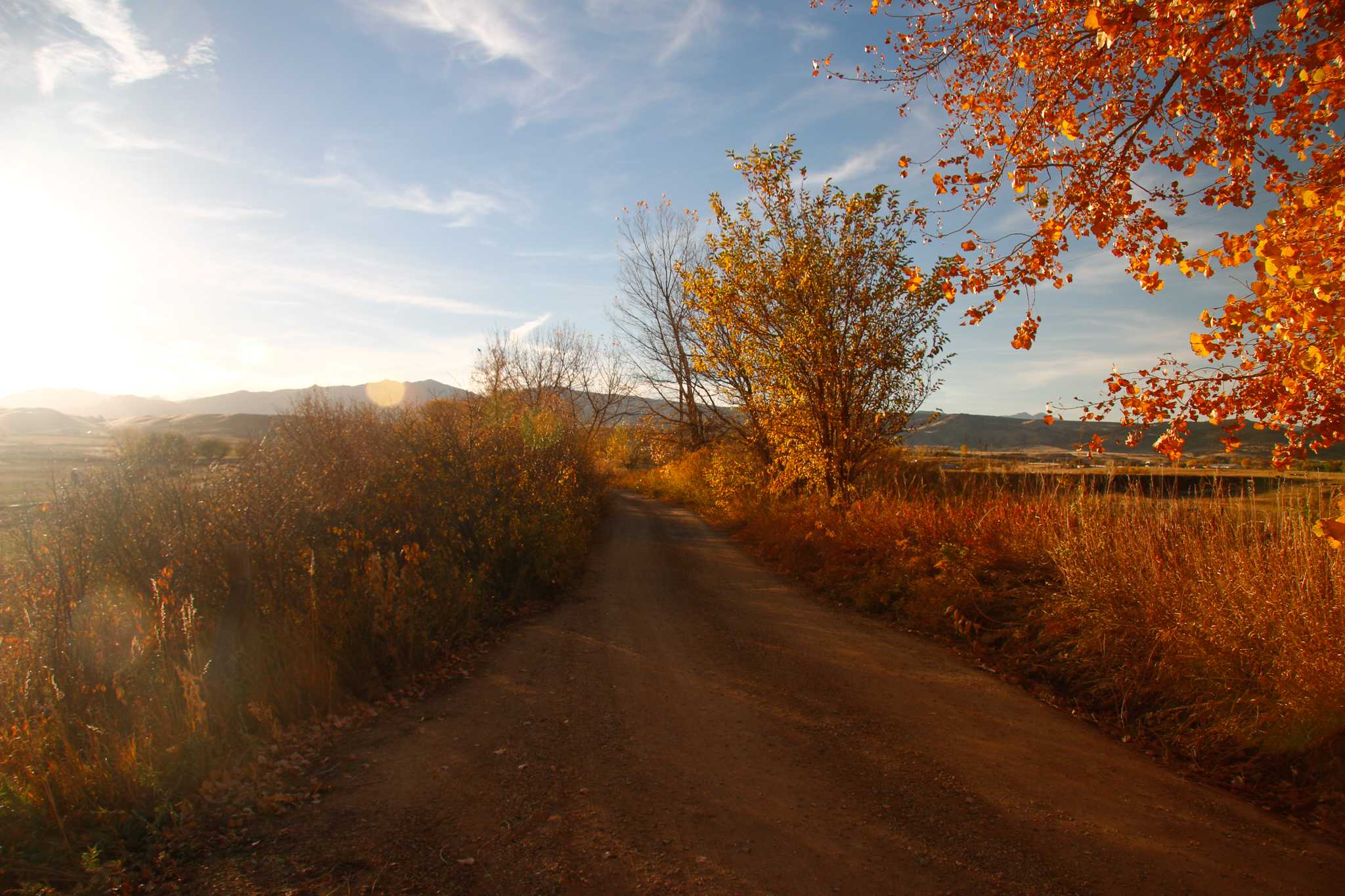 A dirt road leads to McCauley Family Farms in Longmont, Colorado. It was here that Phil Taylor and farmer Marcus McCauley first met at a farm-to-table-dinner.