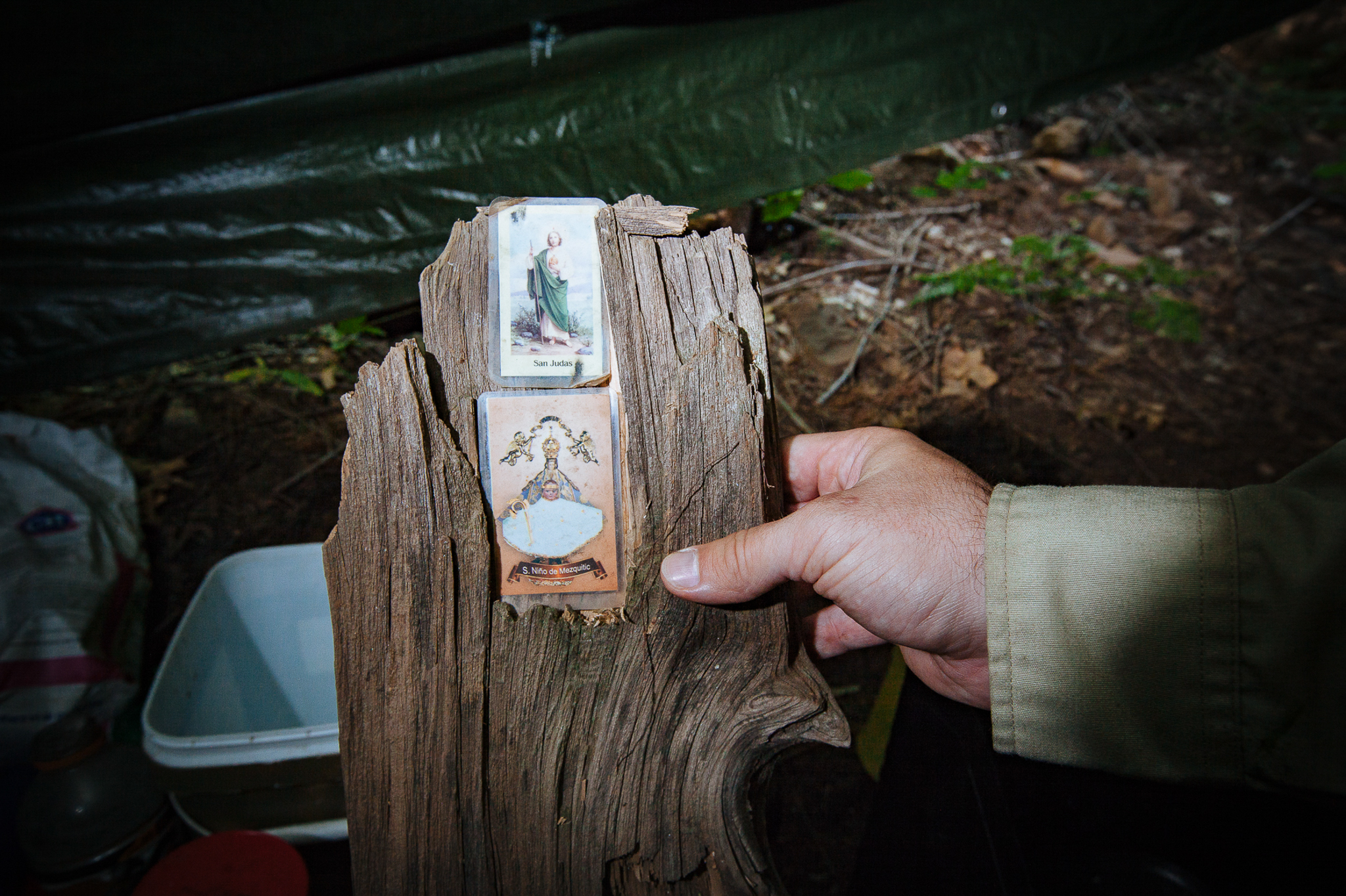 Officers often find evidence of religious shrines at grow camps. In this case, they found prayer cards for Saint Judas and a card symbolizing the Chapel of the Holy Child of Mezquitic Magdalena.
