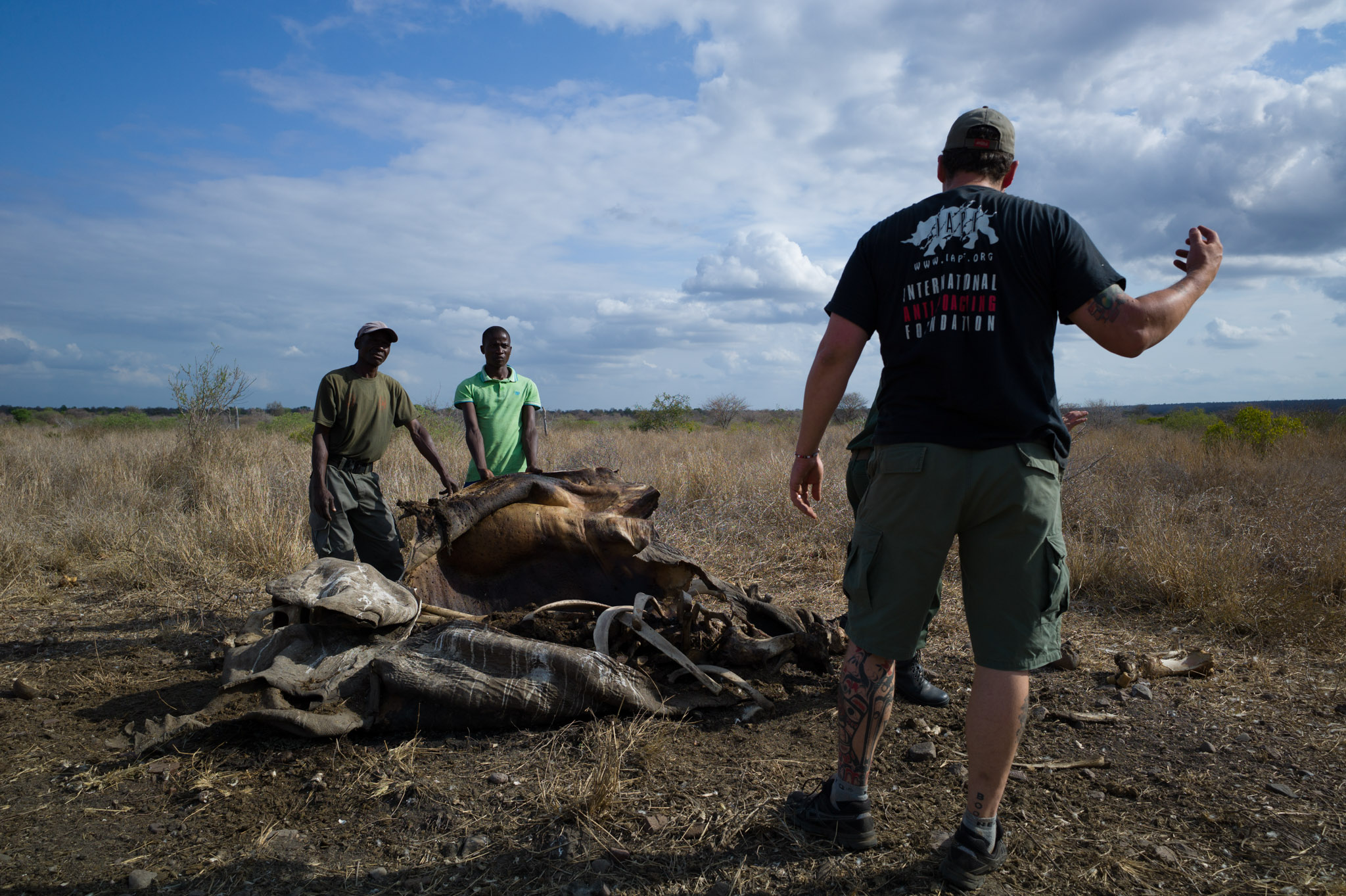 Damien Mander and two of his rangers inspect the remains of a rhino killed by poachers in the Greater Lebombo Conservancy, Mozambique. Photograph by Erico Hiller