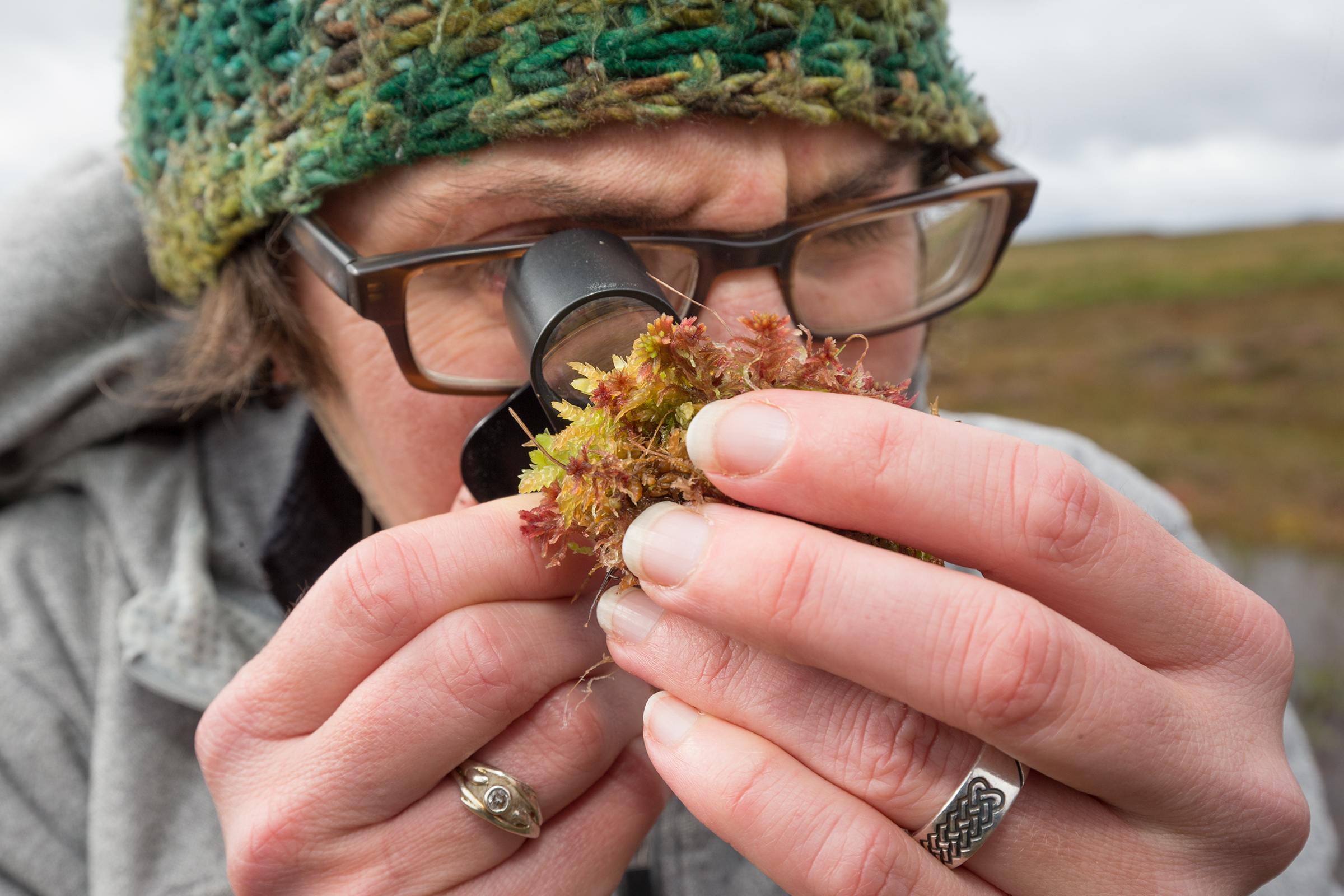 Scientist Roxanne Anderson inspects a small clump of Sphagnum moss on her study site in the Forsinard Flows Reserve.