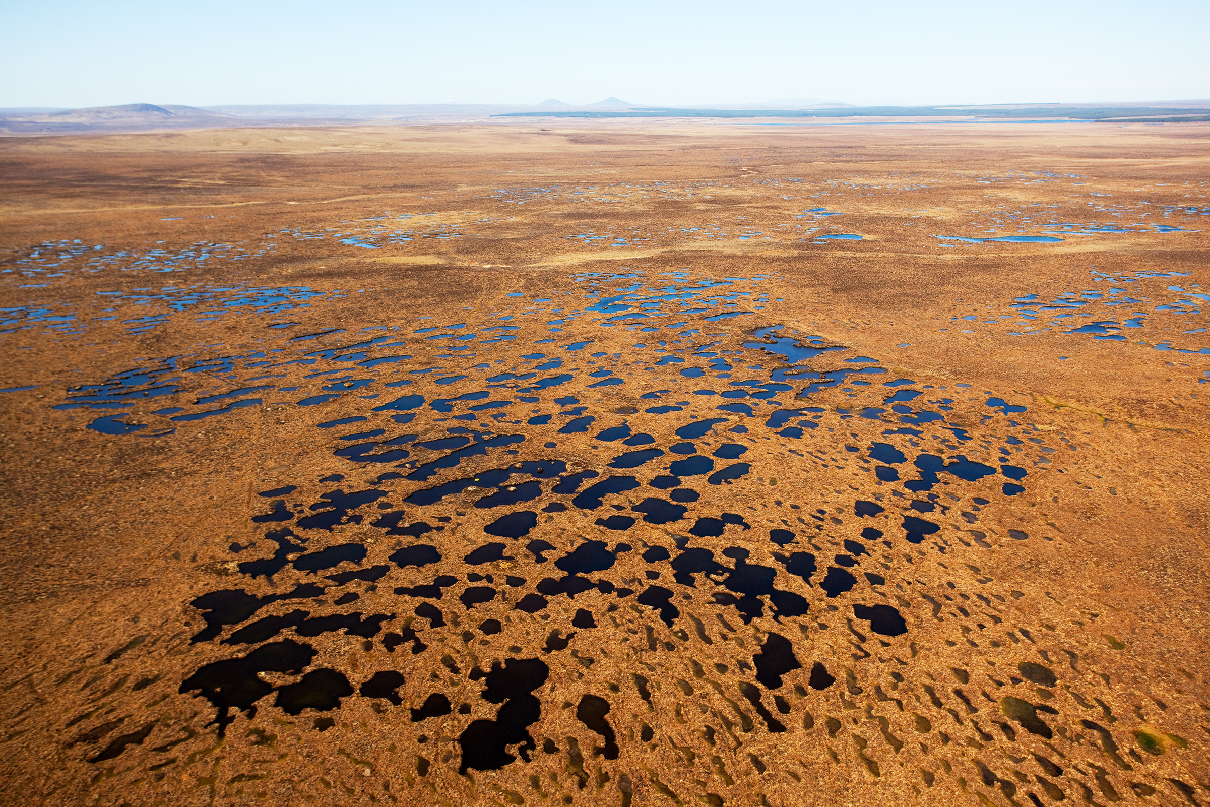 An aerial view of Scotland's Flow Country reveals the importance of water to a healthy peatland ecosystem.