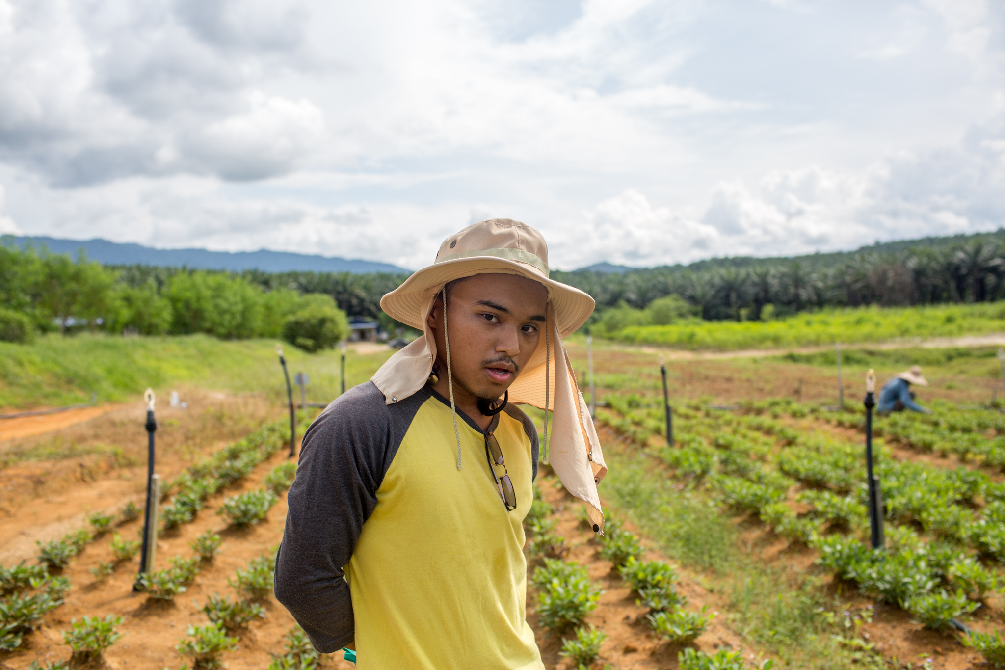 A farmworker stands in a field of Bambara groundnut.