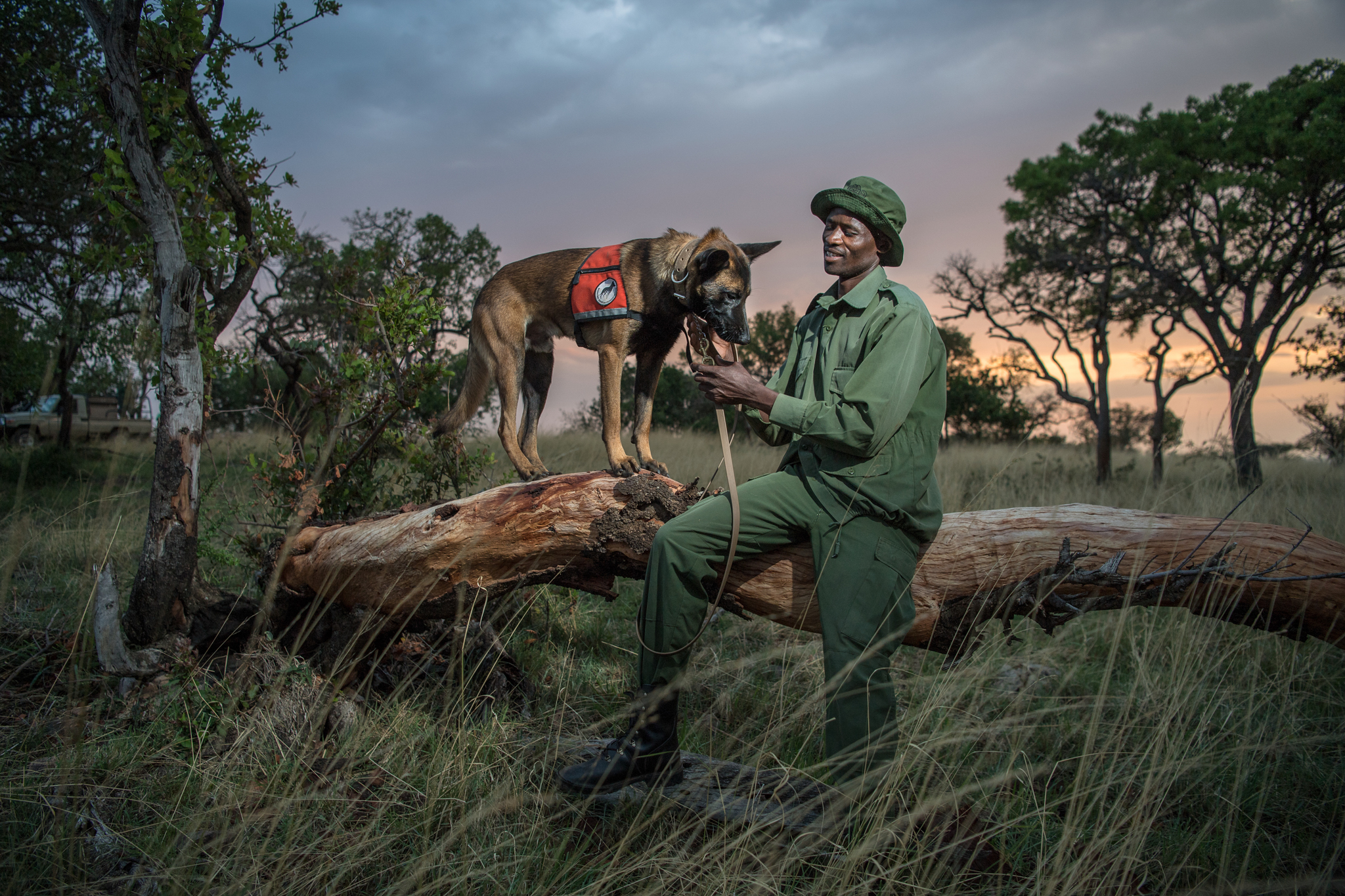 Sareta Be Peter sits with DJ, one of four dogs at the Singita Grumeti Fund Reserve, a conservatory adjacent to Serengeti National Park.