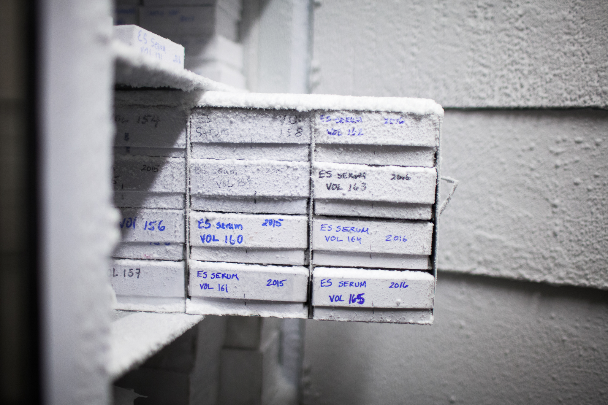 Fastidiously labeled tissue samples line the shelves of several freezers stored on-site at The Marine Mammal Center.