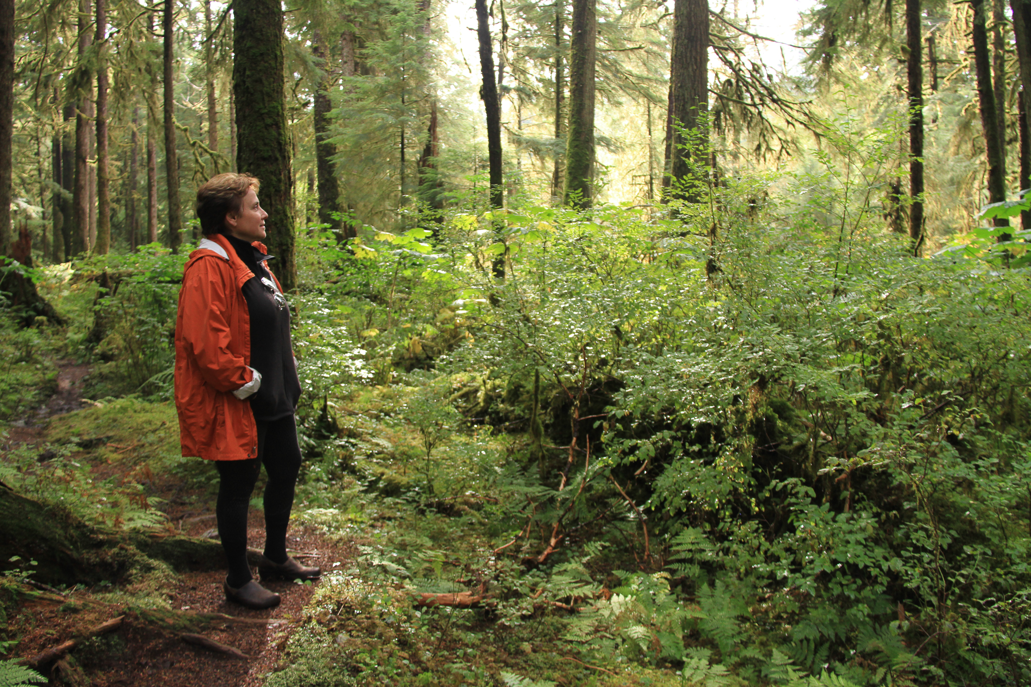 Oregon wood products engineer Catherine Mater visits an old-growth forest in the Honker Divide on Prince of Wales Island. Mater is one of many working to figure out how to transition more quickly from old-growth to young-growth logging.