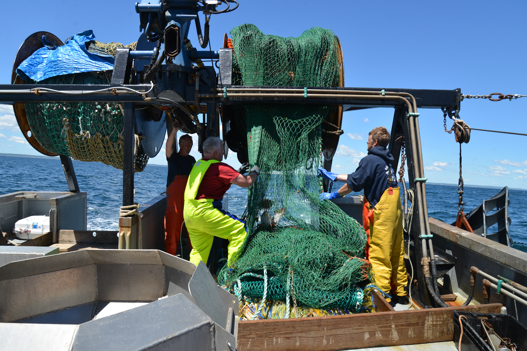 The crew of the Miss Emily tend the trawl net. Photo by Nicola Twilley