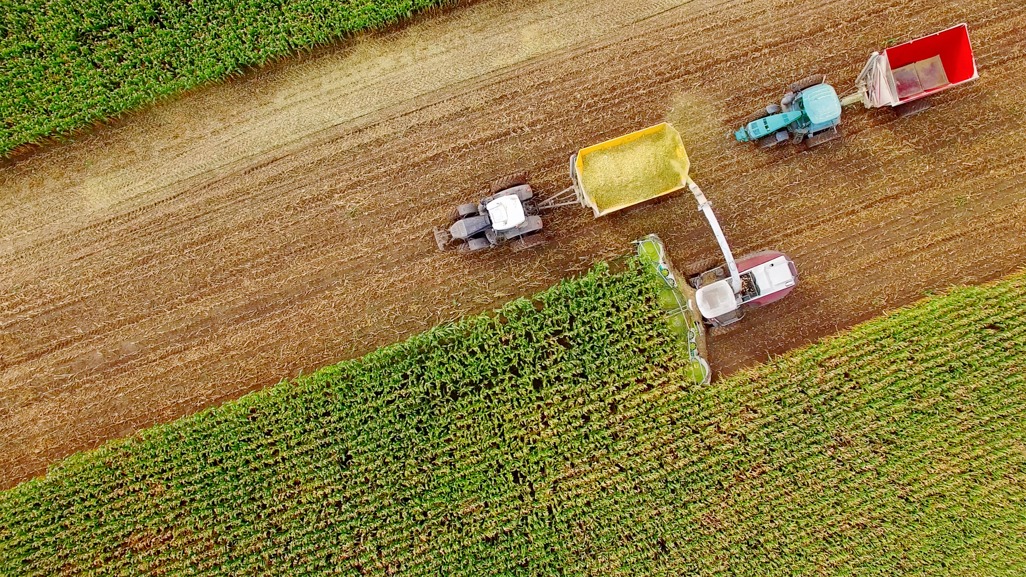 Aerial view of farm machines harvesting crops. Photo by James Brey.