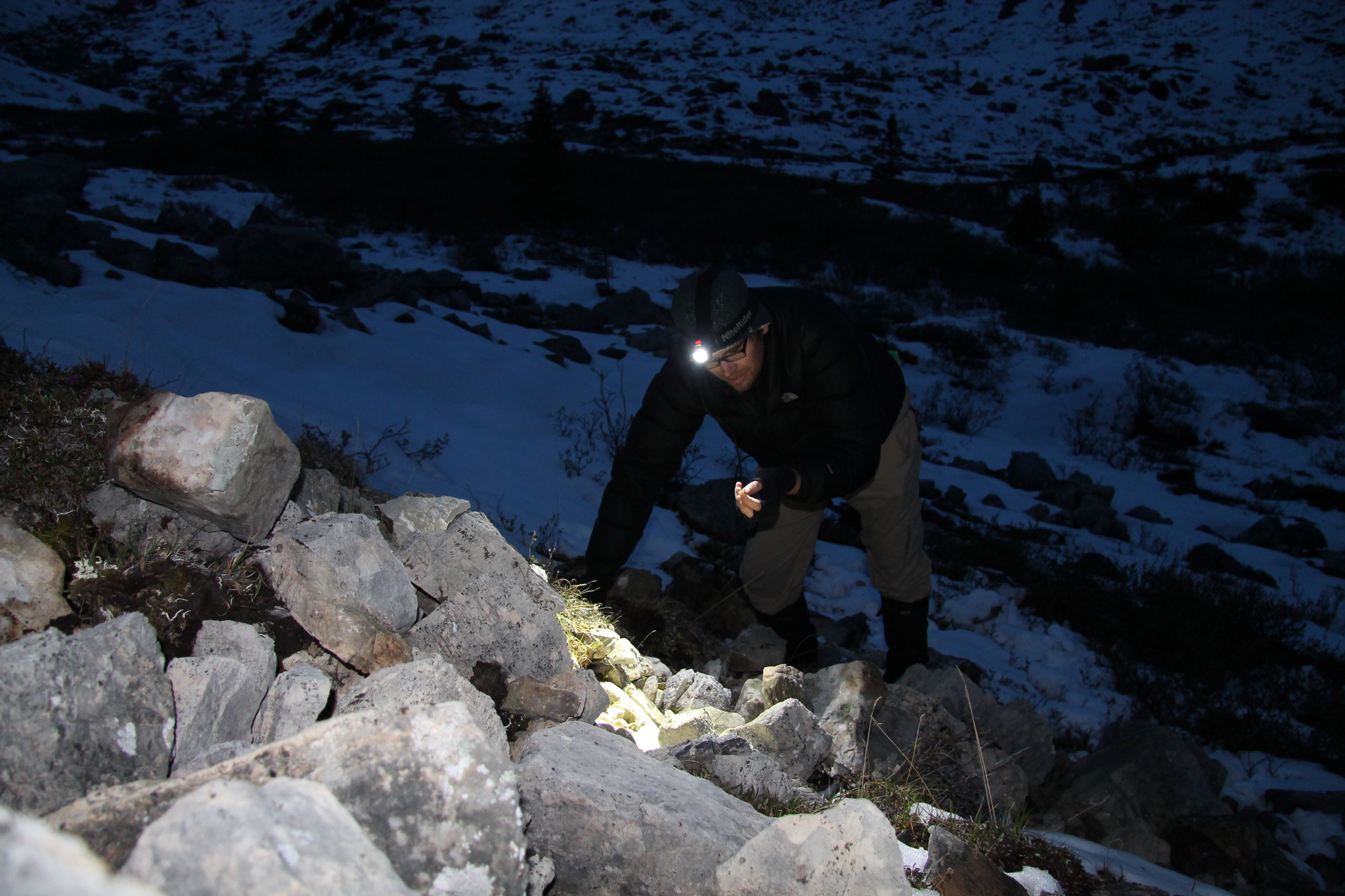 Entomologist Sean Schoville retraces the steps of Joseph William Kamp, the last person to collect ice crawlers at Mount St. Paul was. Kamp believed this region, at the northern end of the Rocky Mountains, served as an oasis for ice crawlers during the last ice age.
