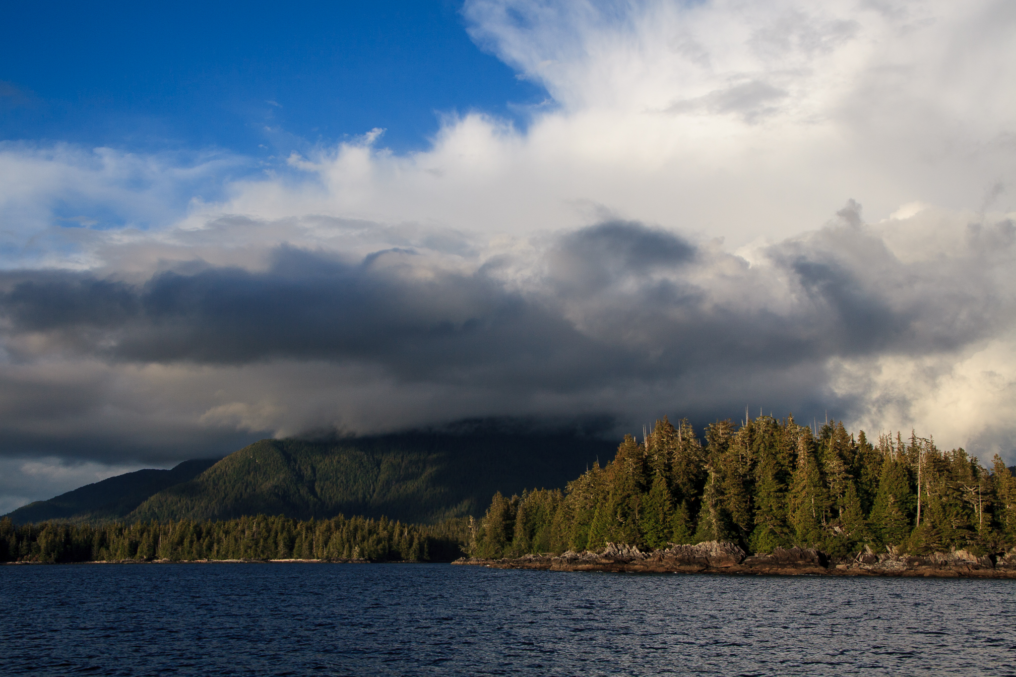 A typical view from the Achiever looking back on British Columbia's Great Bear Rainforest